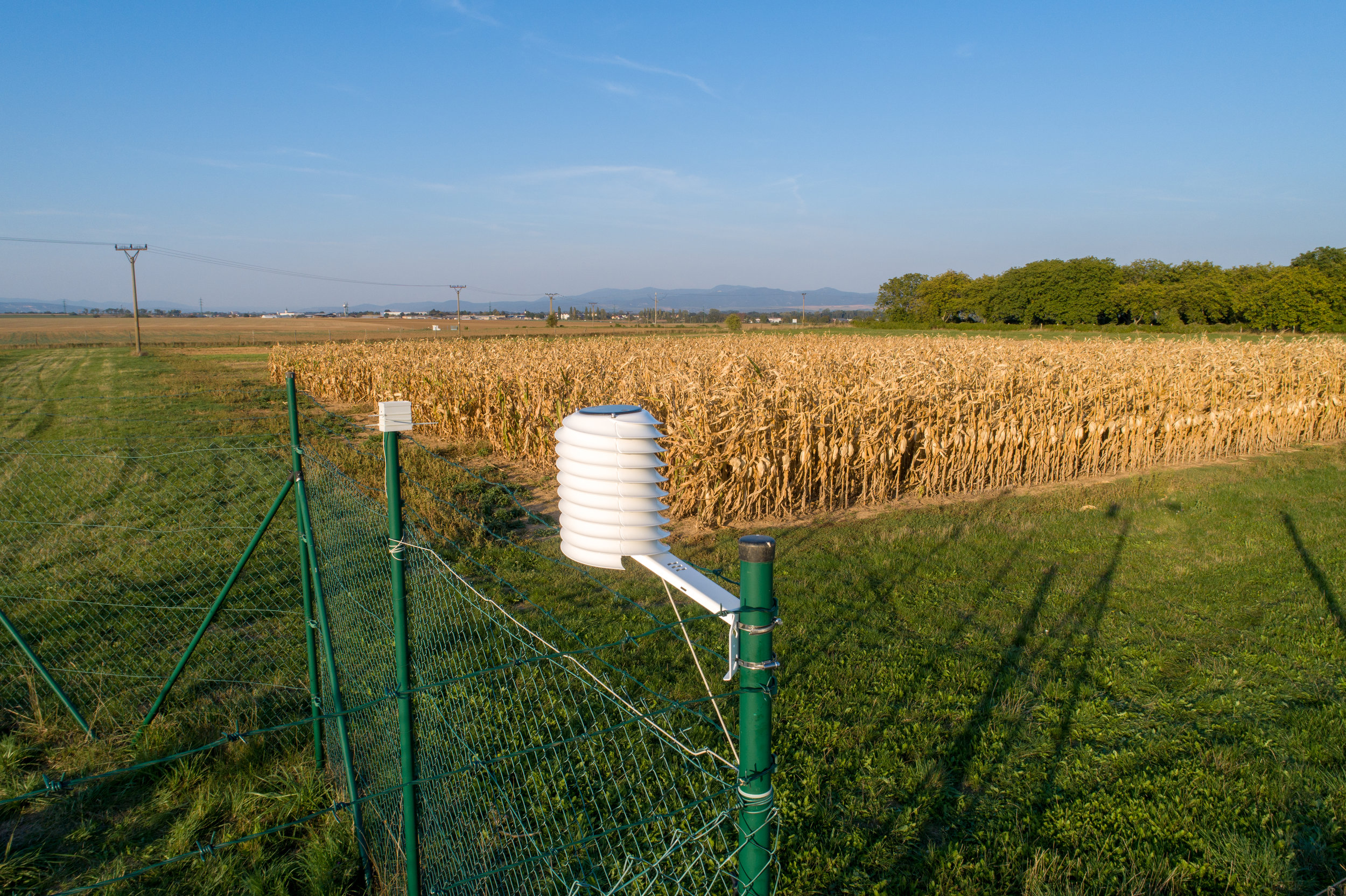 MeteoHelix agricultural weather station overlooking crop field experiments in a vandalism prone area.