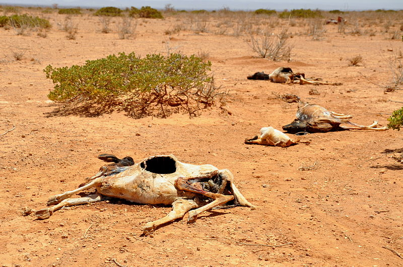 Weather as a weapon creates opportunities to destabilize economies and governments. 2011 East Africa drought. Photo by Oxfam East Africa.