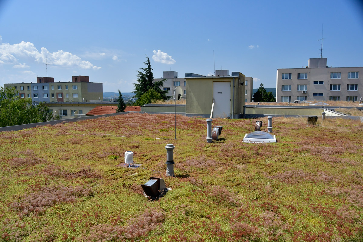 Comenius University research on the real climatological benefits of green roofs in inner-cities is supported by BARANI DESIGN Technologies' educational discounts.