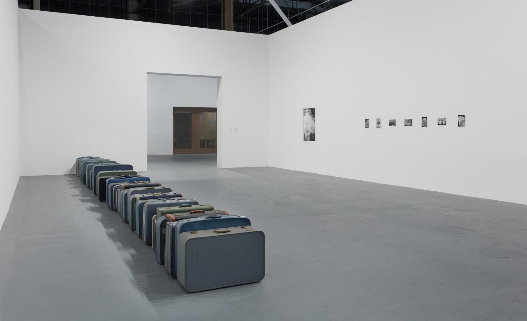 Вид експозиції Зої Леонард: Survey, 11 листопада 2018 року - 25 березня 2019 року у Geffen Contemporary в MOCA, надано Музеєм сучасного мистецтва, Лос-Анджелес, фото Брайана Форреста