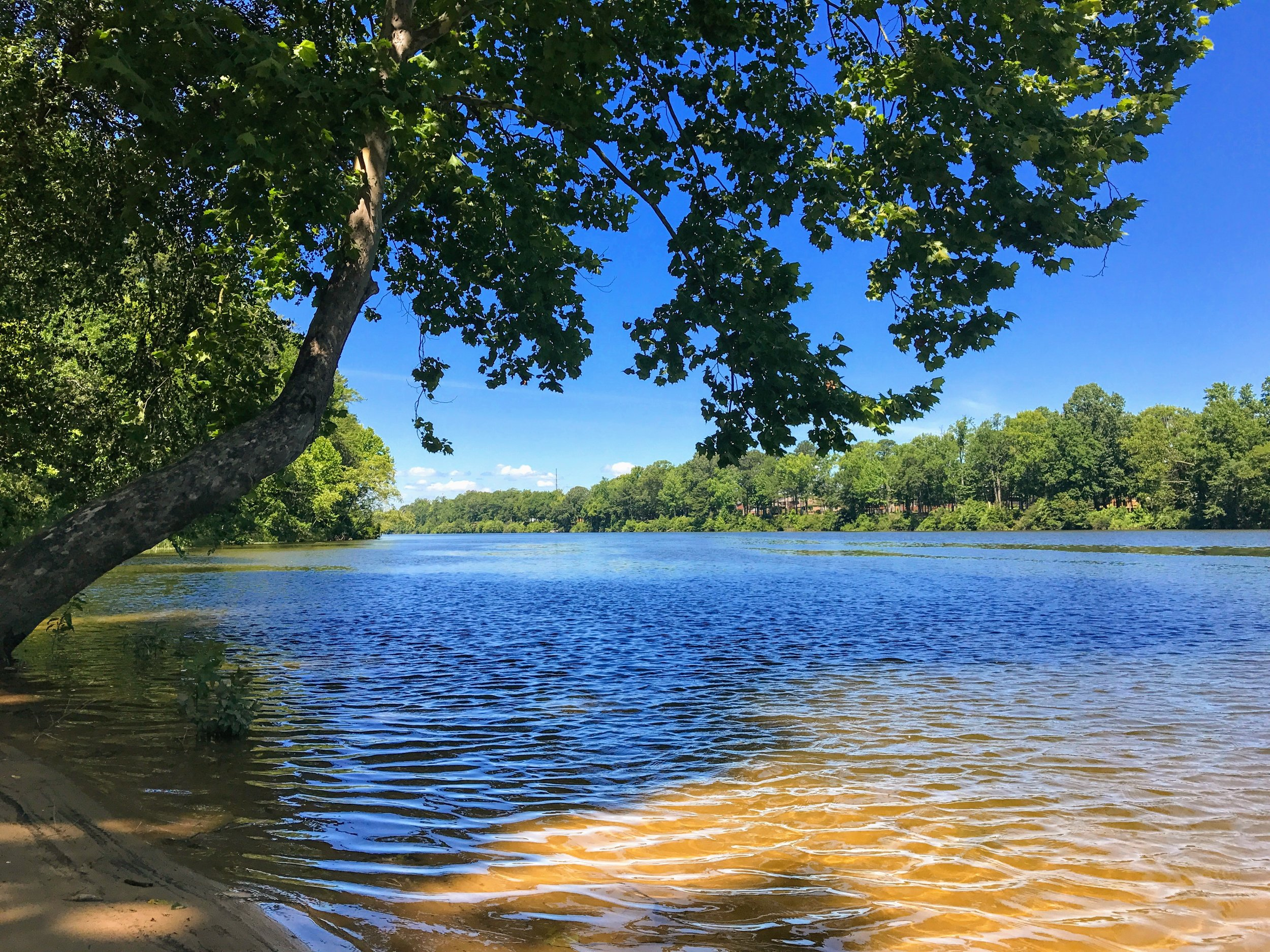 Lazy day by the Black Warrior River