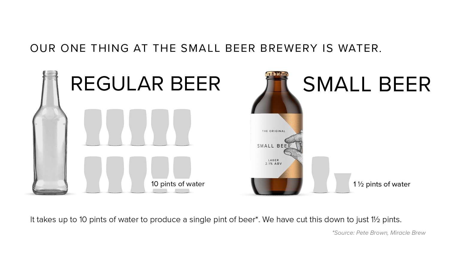 SMALL BEER INFOGRAPHIC.png