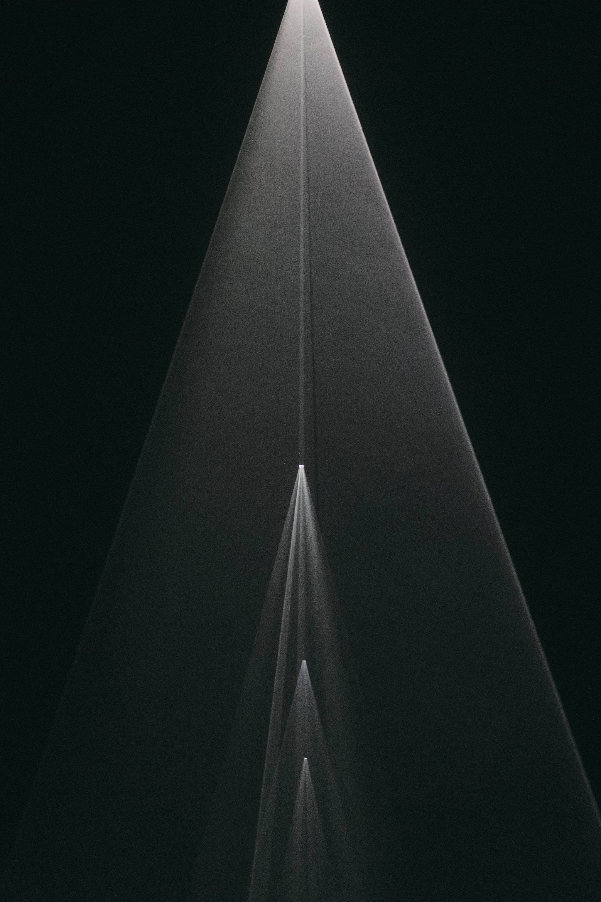 One-Night-Cereus-Pioneer-Works0006-2.jpg