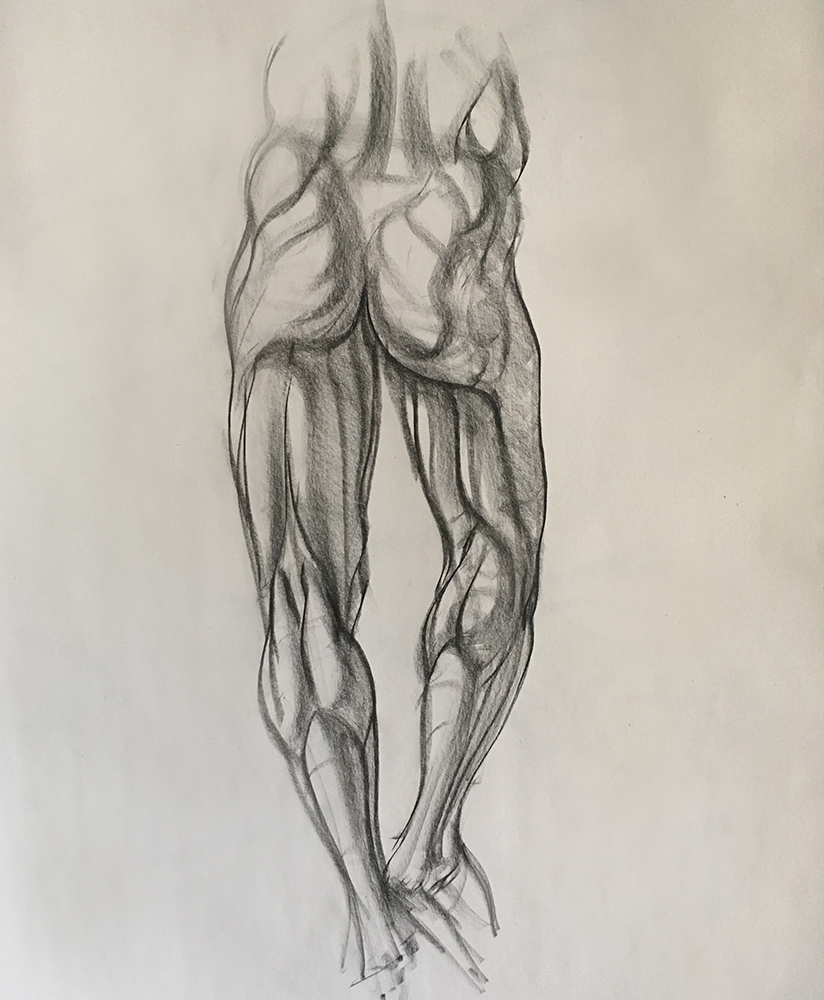 Leg Anatomy study from écorché. 2018