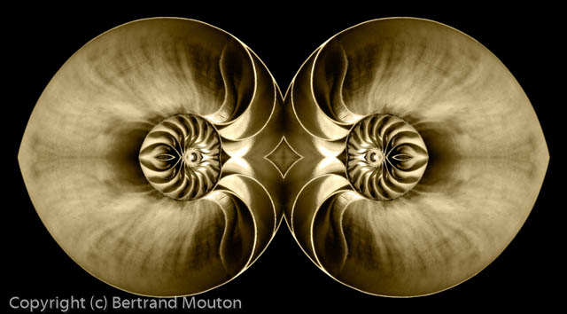 Mouton_091221_0035_Composite-2.jpg
