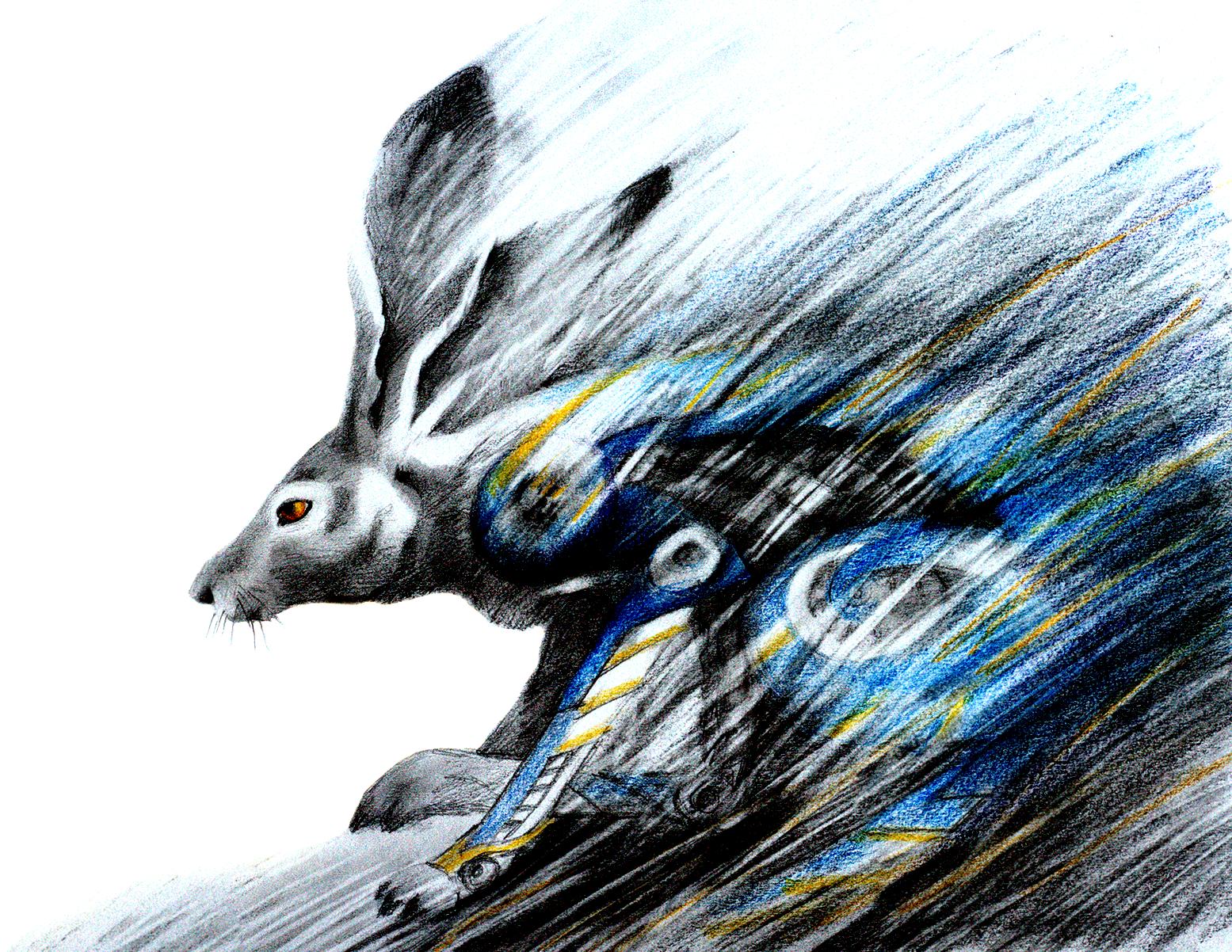 Flash Bunny.png