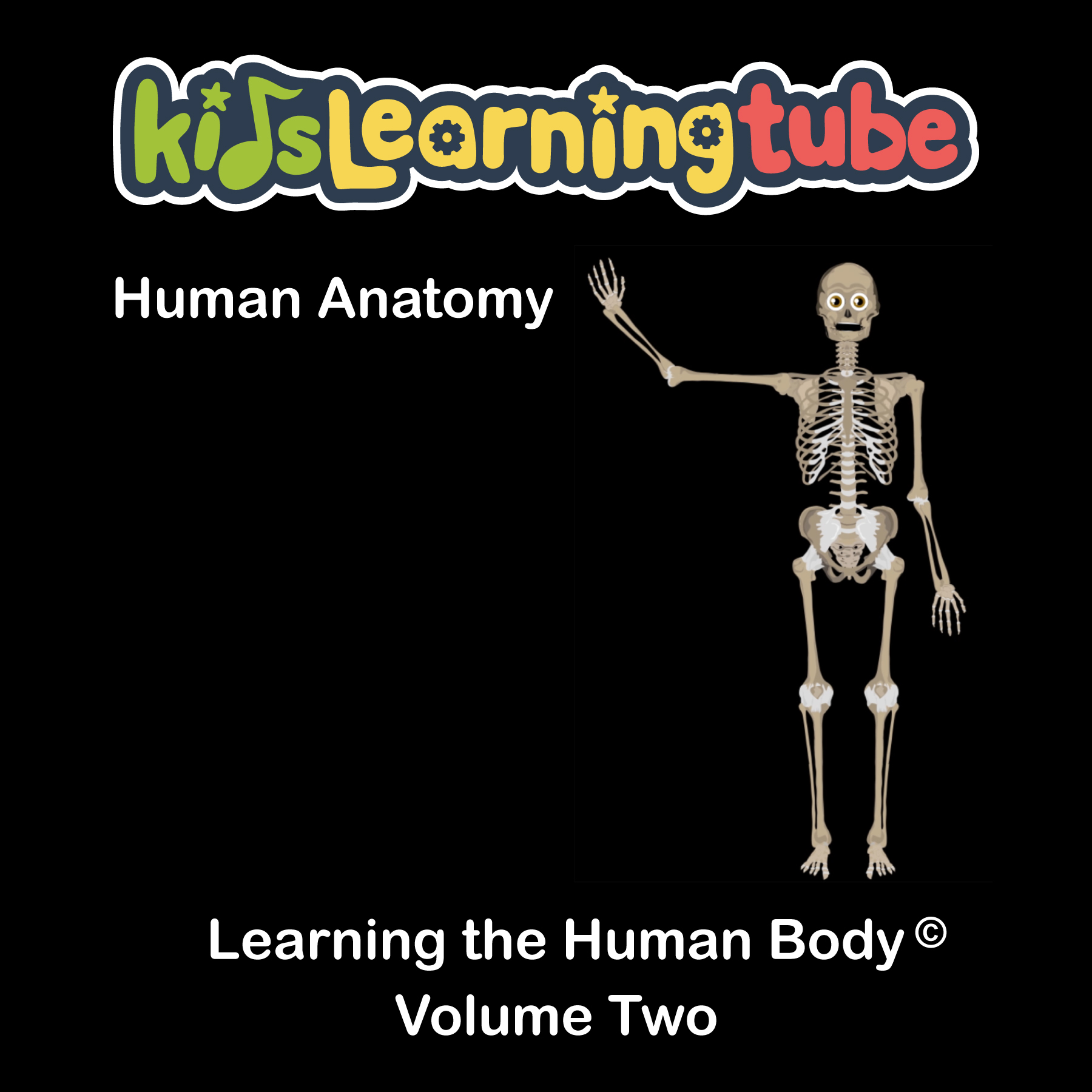 Learning the Human Body Vol. II Album  $14.00