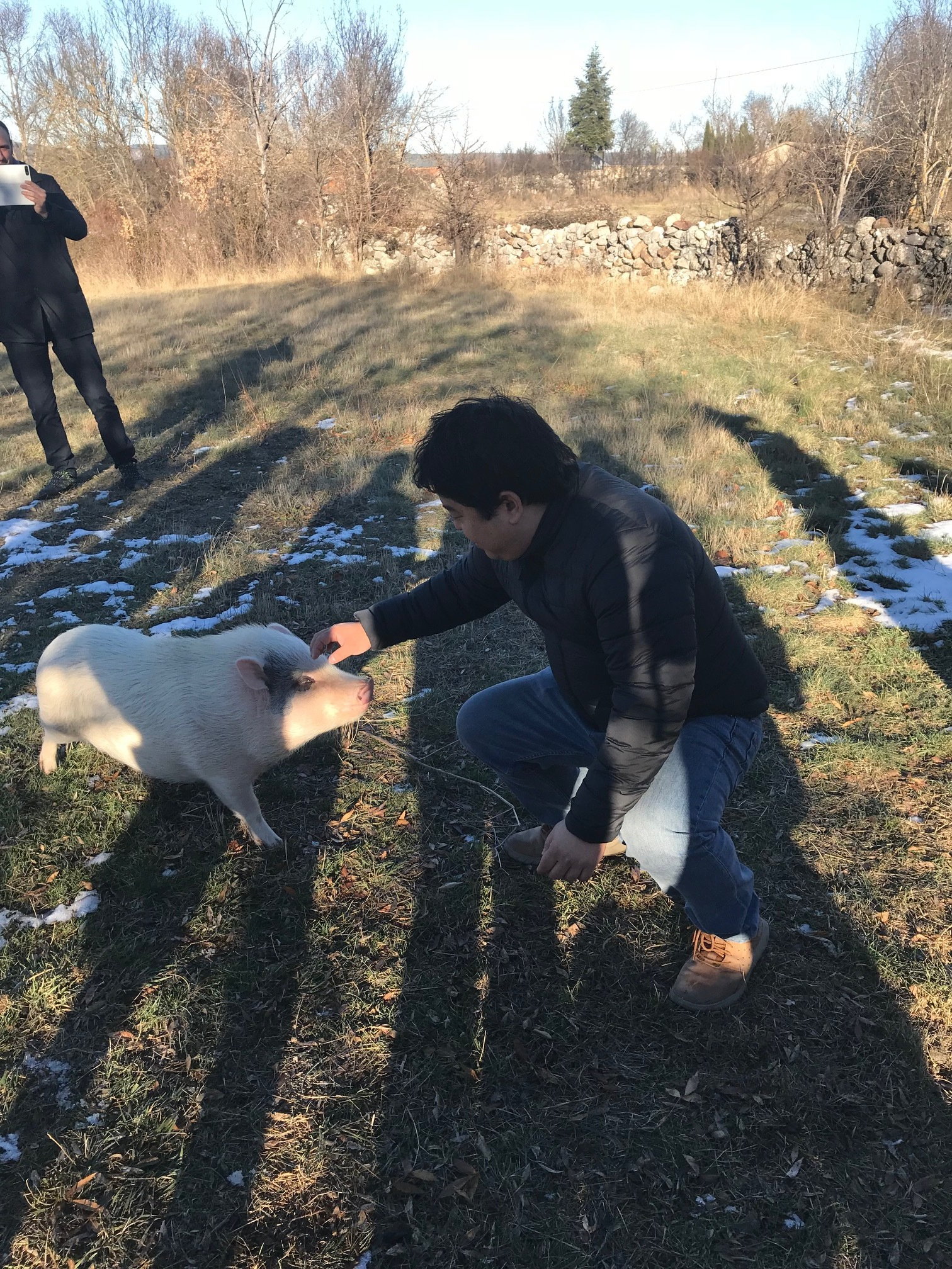 Although Javier owns a truffle pig, he opted to use the dog on the day of our visit because pigs are more likely to gobble up the truffles after they dig them up.