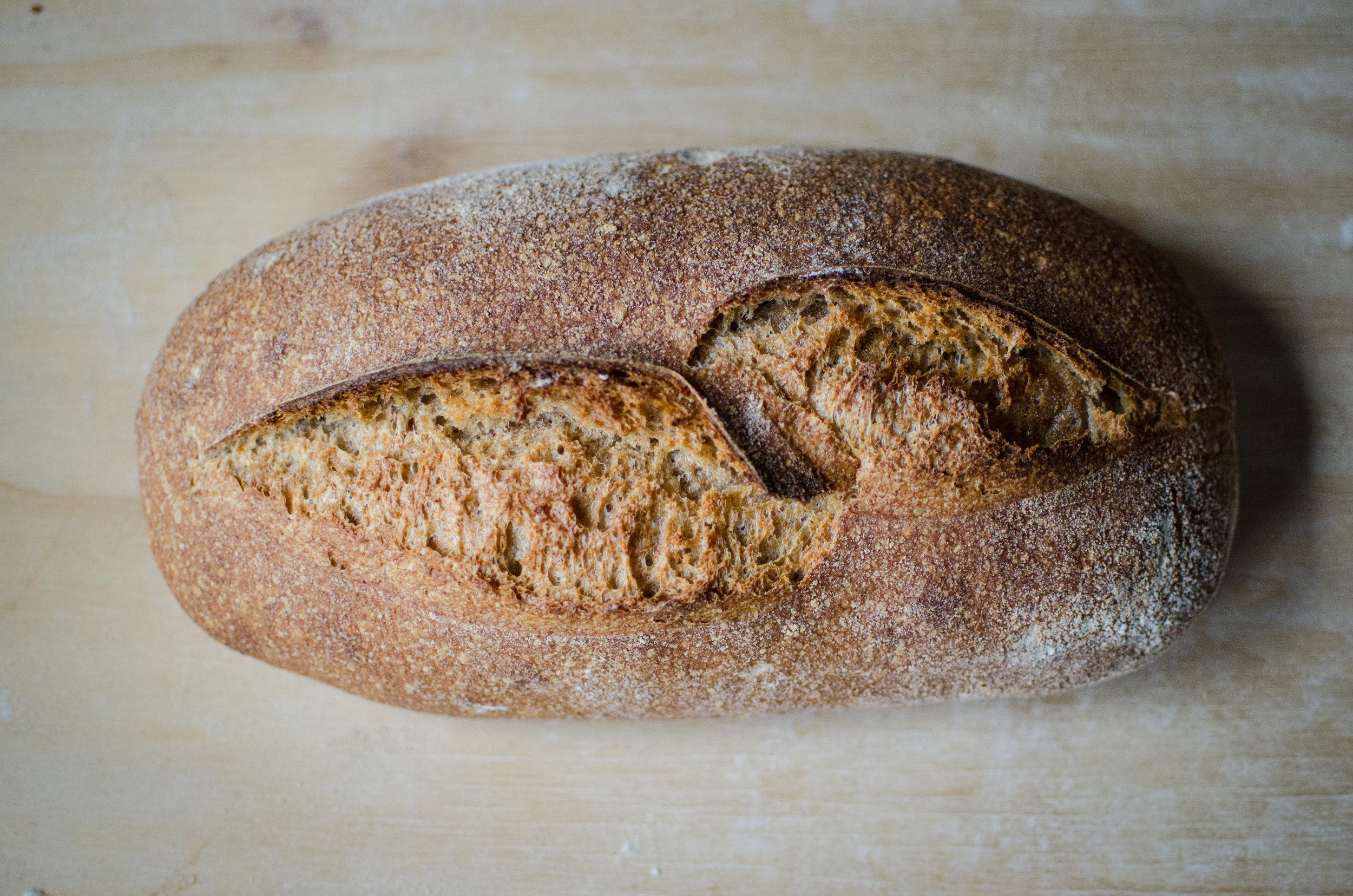 Bread Bread breads-4389.jpg