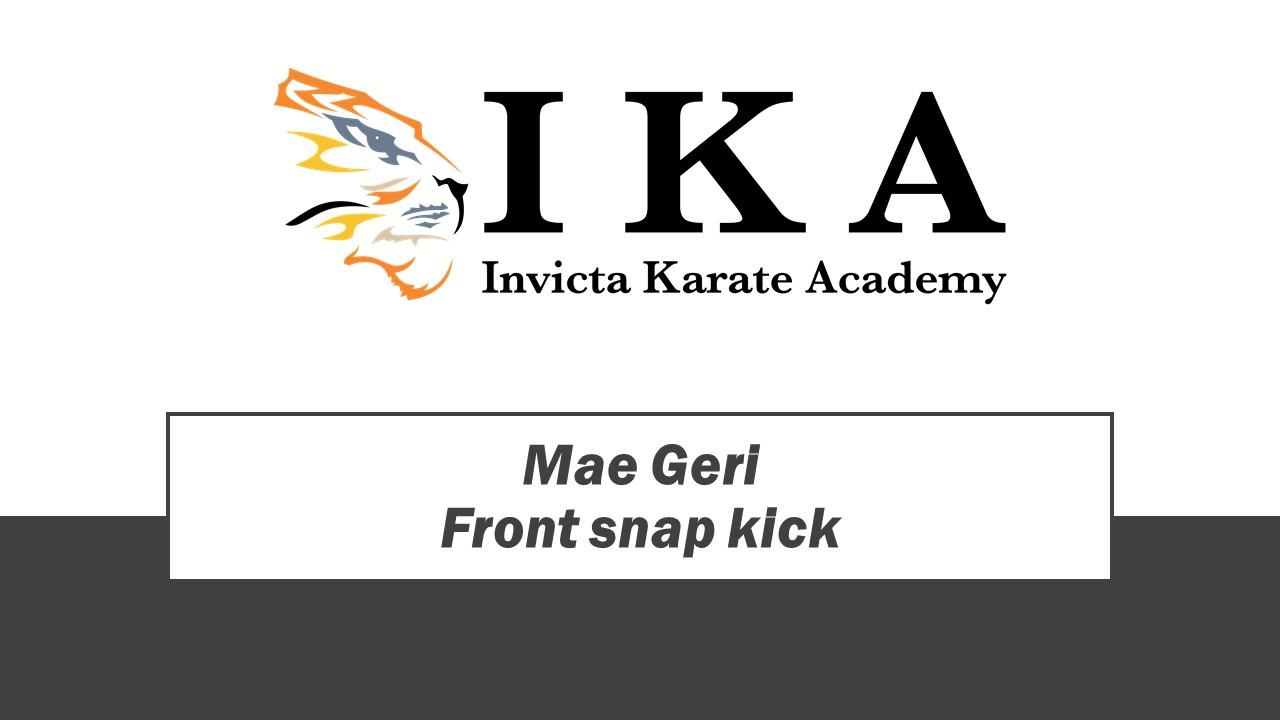 Front snap kick .jpg