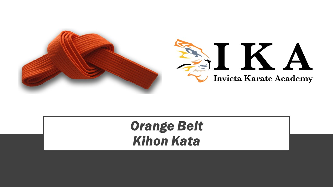 Orange Belt.jpg