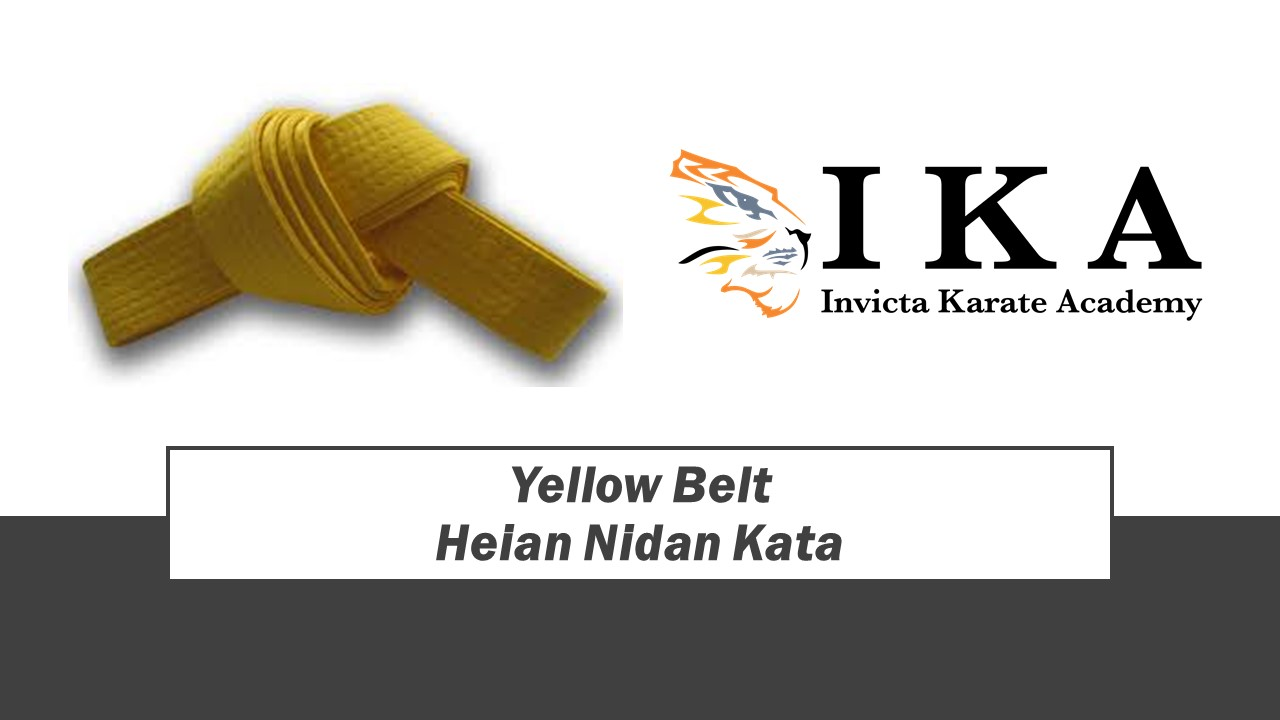 Yellow Belt.jpg
