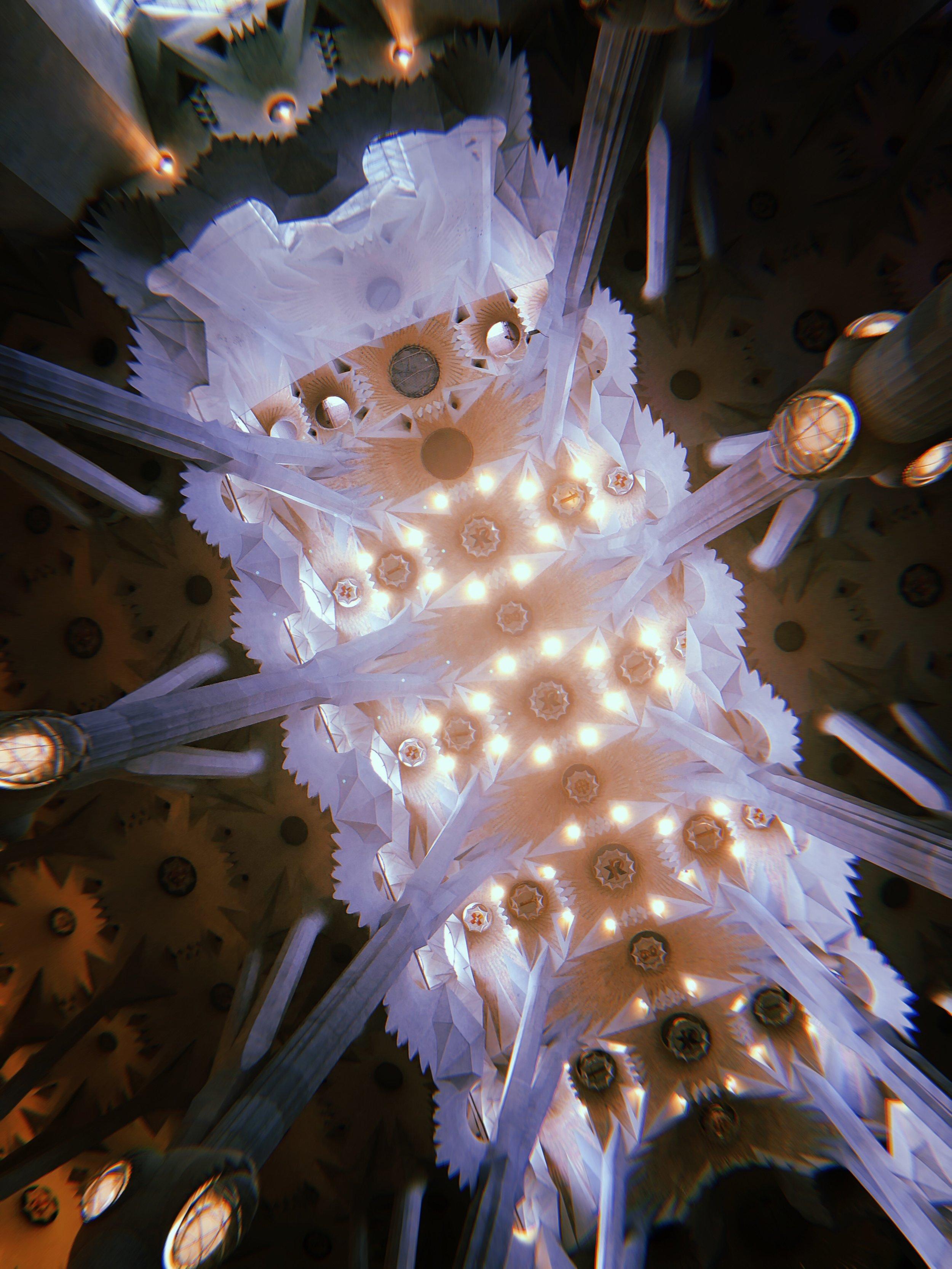 Sagrada Familia: The Ceiling