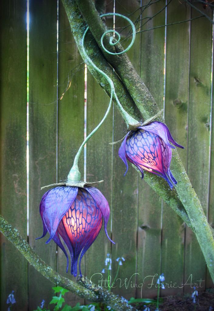 purple bloom3.JPG