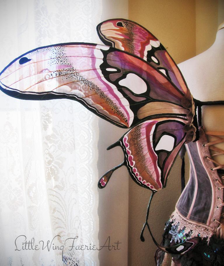 atlas moth wings5.JPG