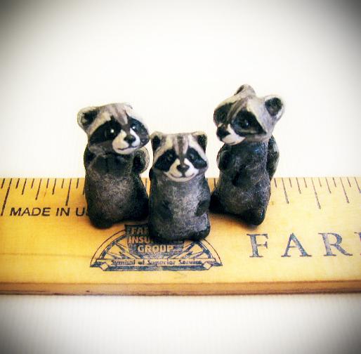 tiny raccoons2.jpg