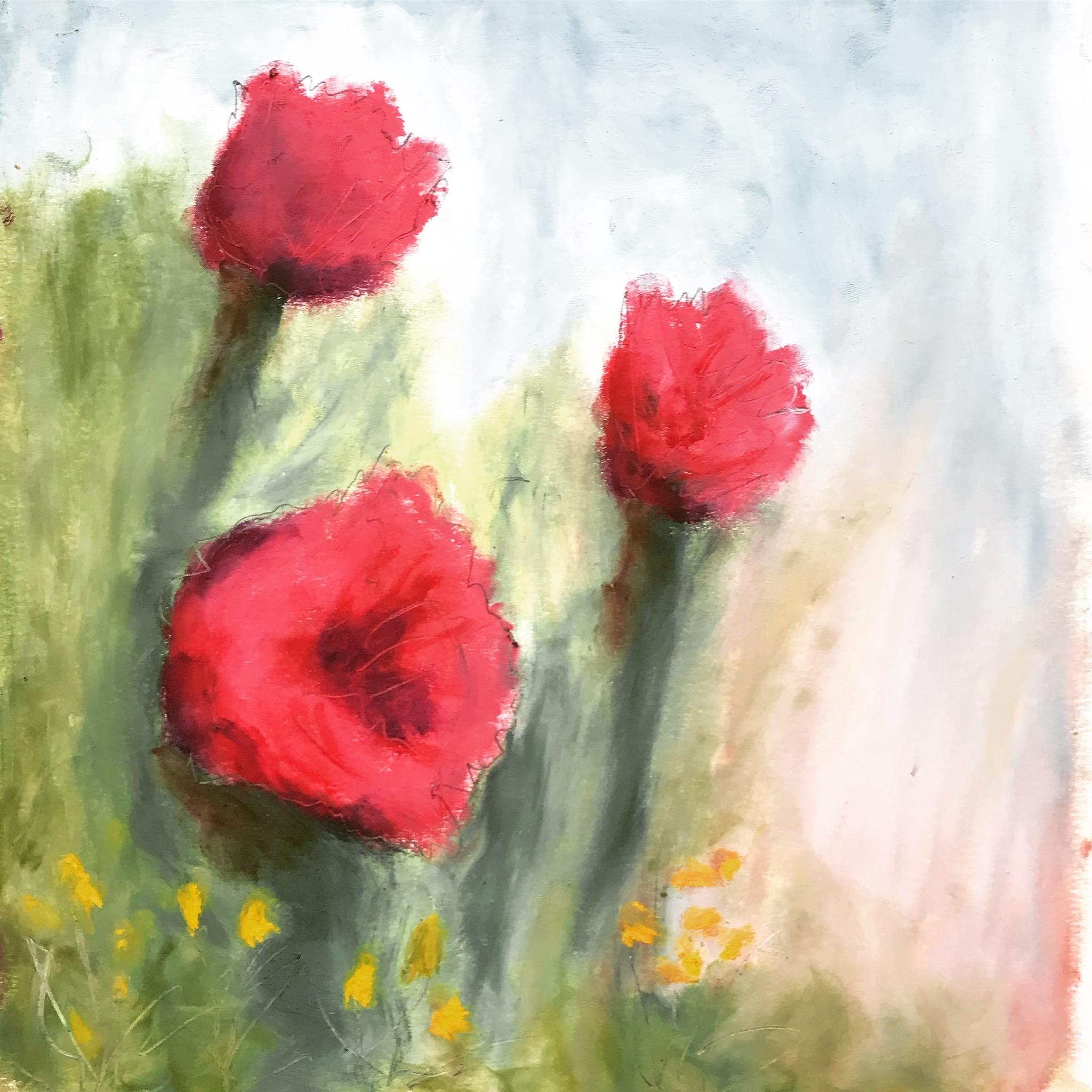 Wild poppies - One of my favorite new oil pastel paintings, which I made using Sennelier oil pastels and cold-pressed watercolor paper