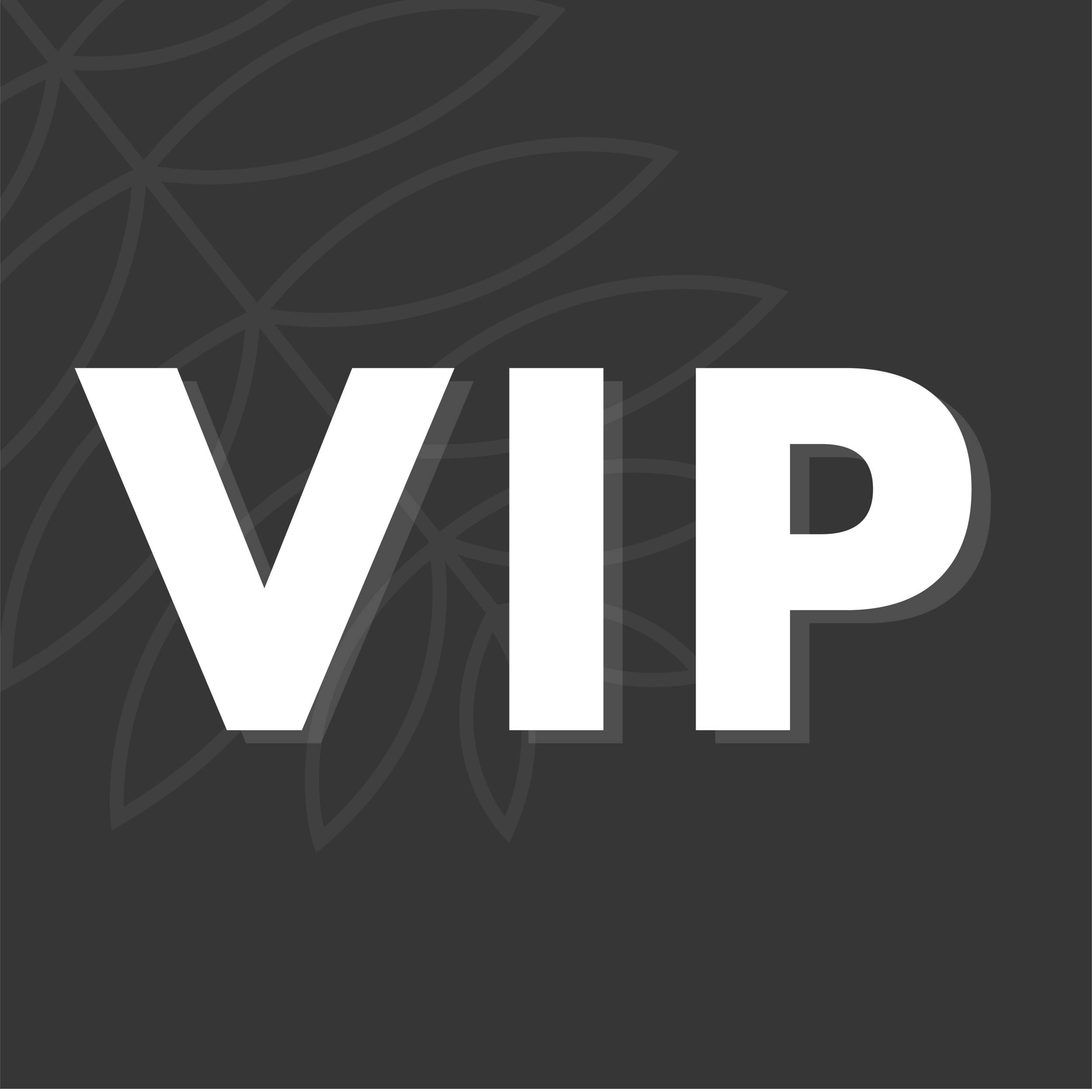 VIP tickets-09.png