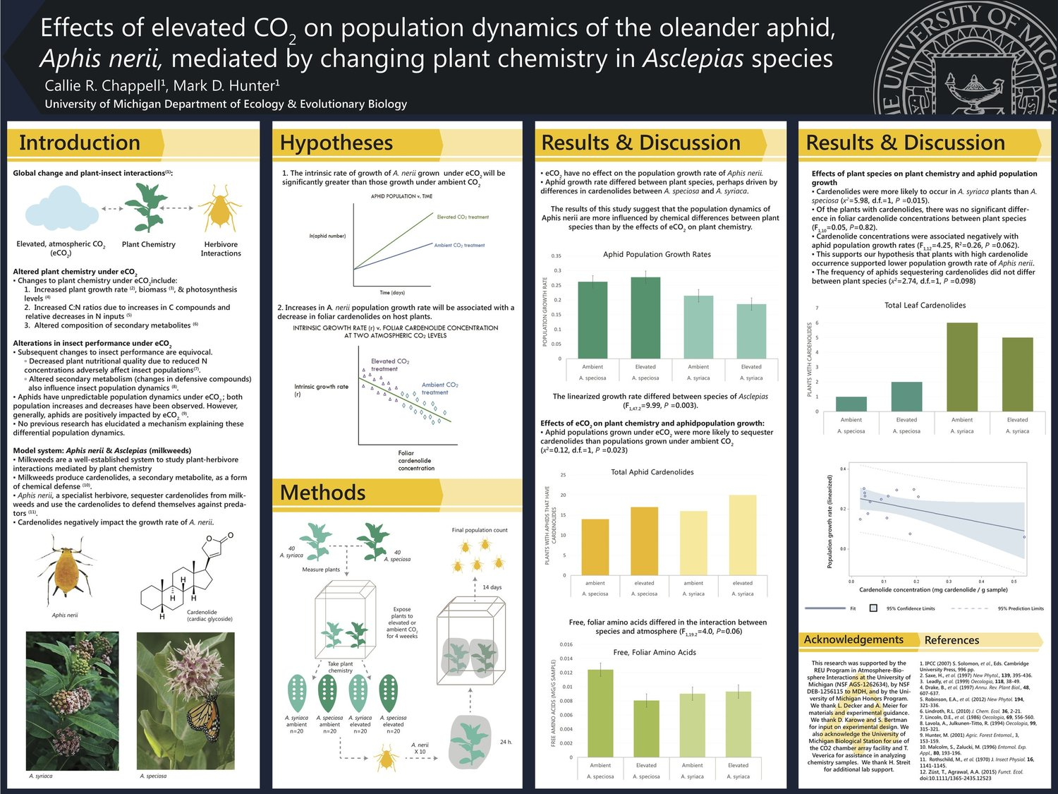 Research Poster for Undergraduate Honors Thesis
