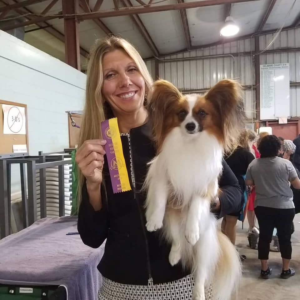 Sammy went Best of Breed at the Iced Tea Cluster with Norma Smith! 8-15-18