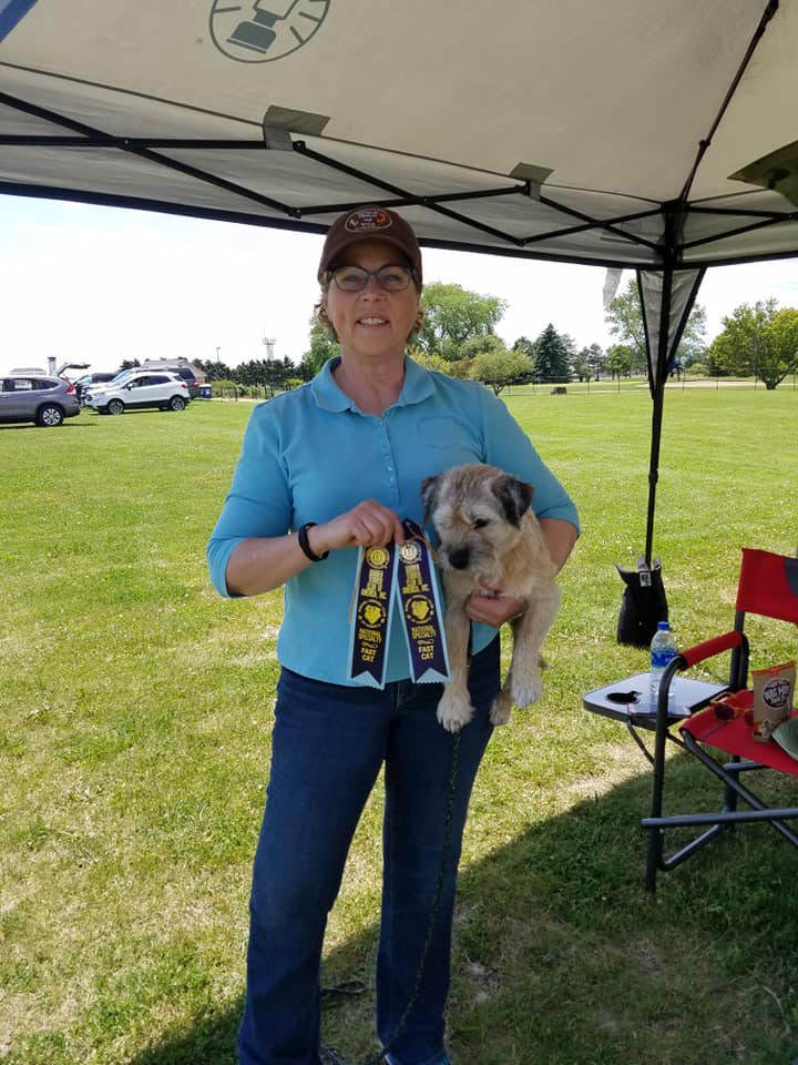 Laura and Keifer with his qualifying ribbons from the Fast CAT trial at the 2019 Border Terrier Club of America National Specialty.