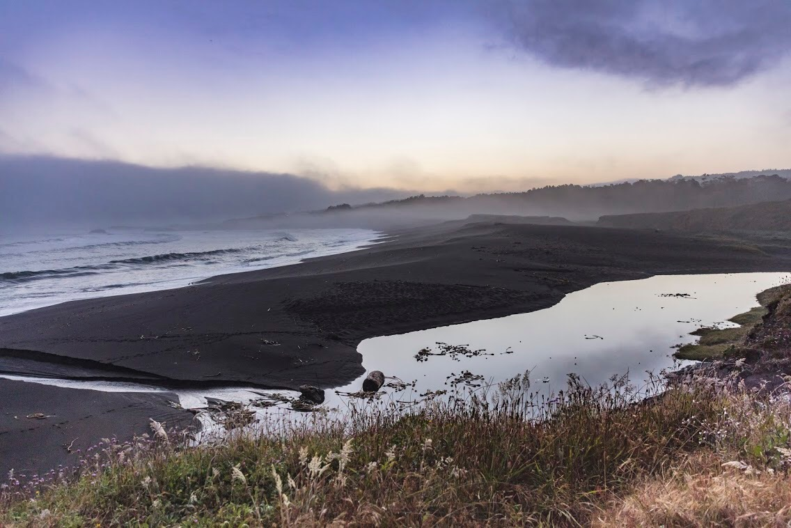 Guided by an 'ocean-first' ethos, we hand harvest wild seaweed from the pristine waters of the Mendocino coast.