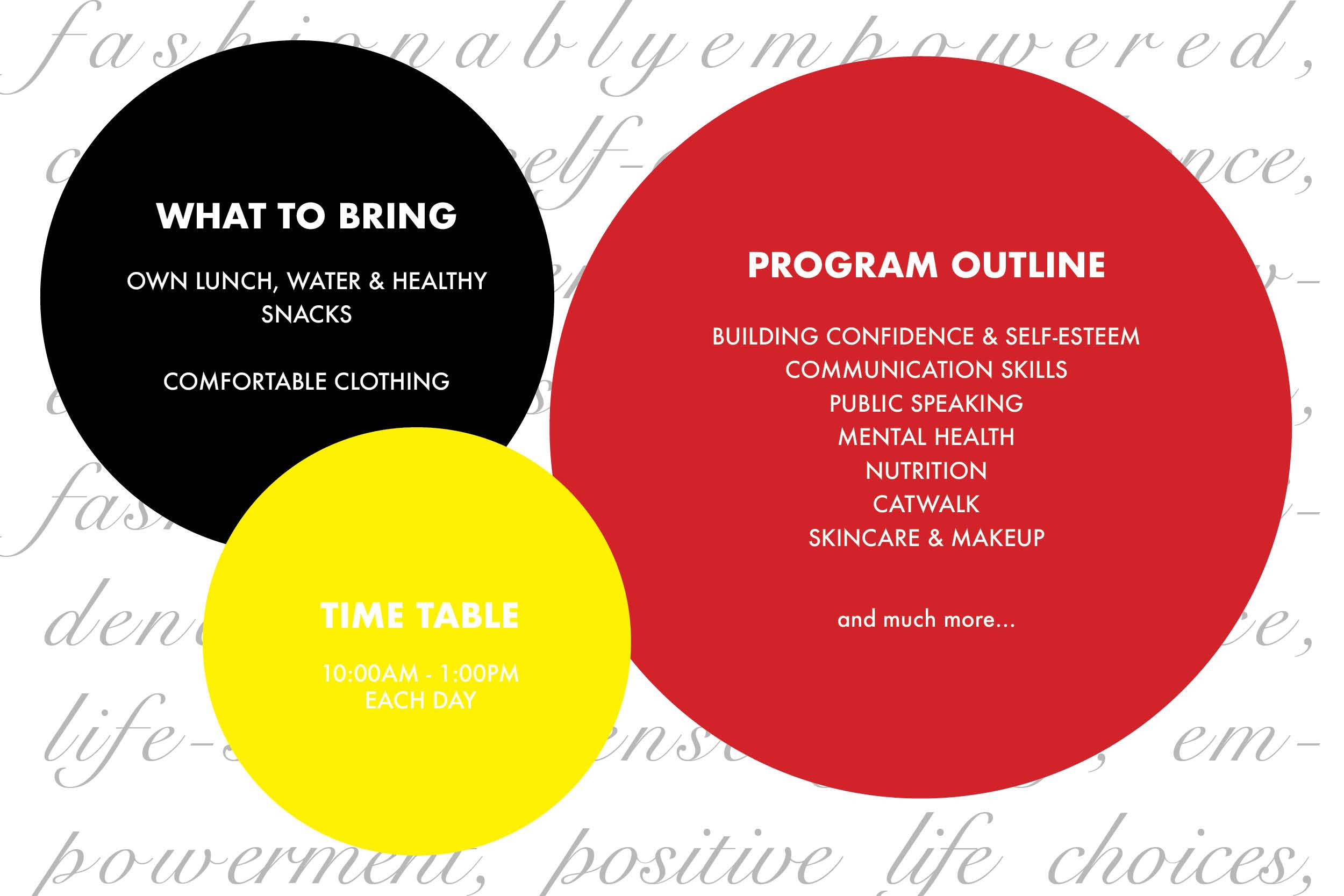 TDP Program Ouline Website.jpg