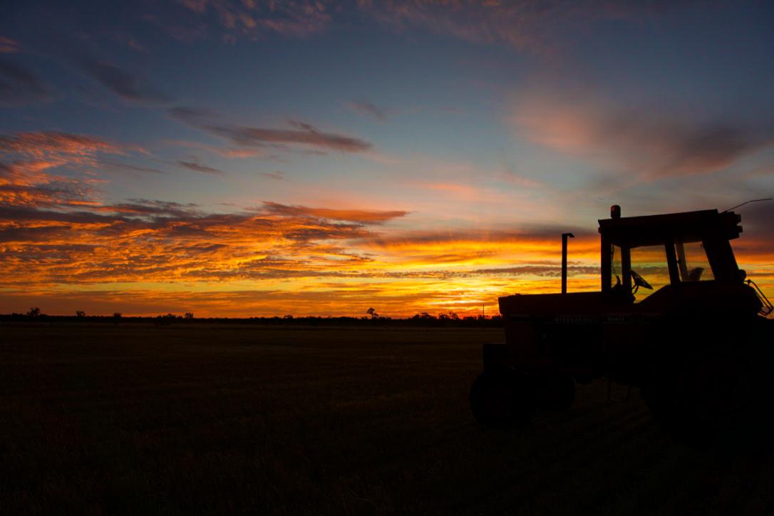 Amy Webb, Dimboola sunset 1.jpg