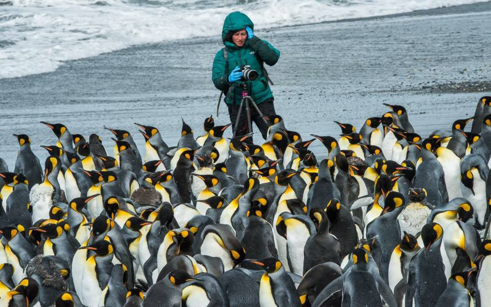 me and penguins.jpg
