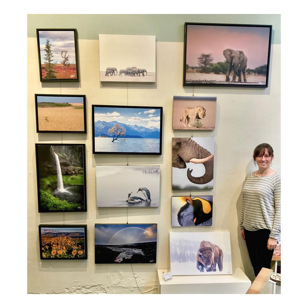 Artistic Portland Art Gallery and Store - Display and Sales Beginning February 1, 2019318 SW Taylor St, Portland OregonHours: Sunday 12pm-5pm and Monday through Saturday 10pm-6pm(503)206-4631