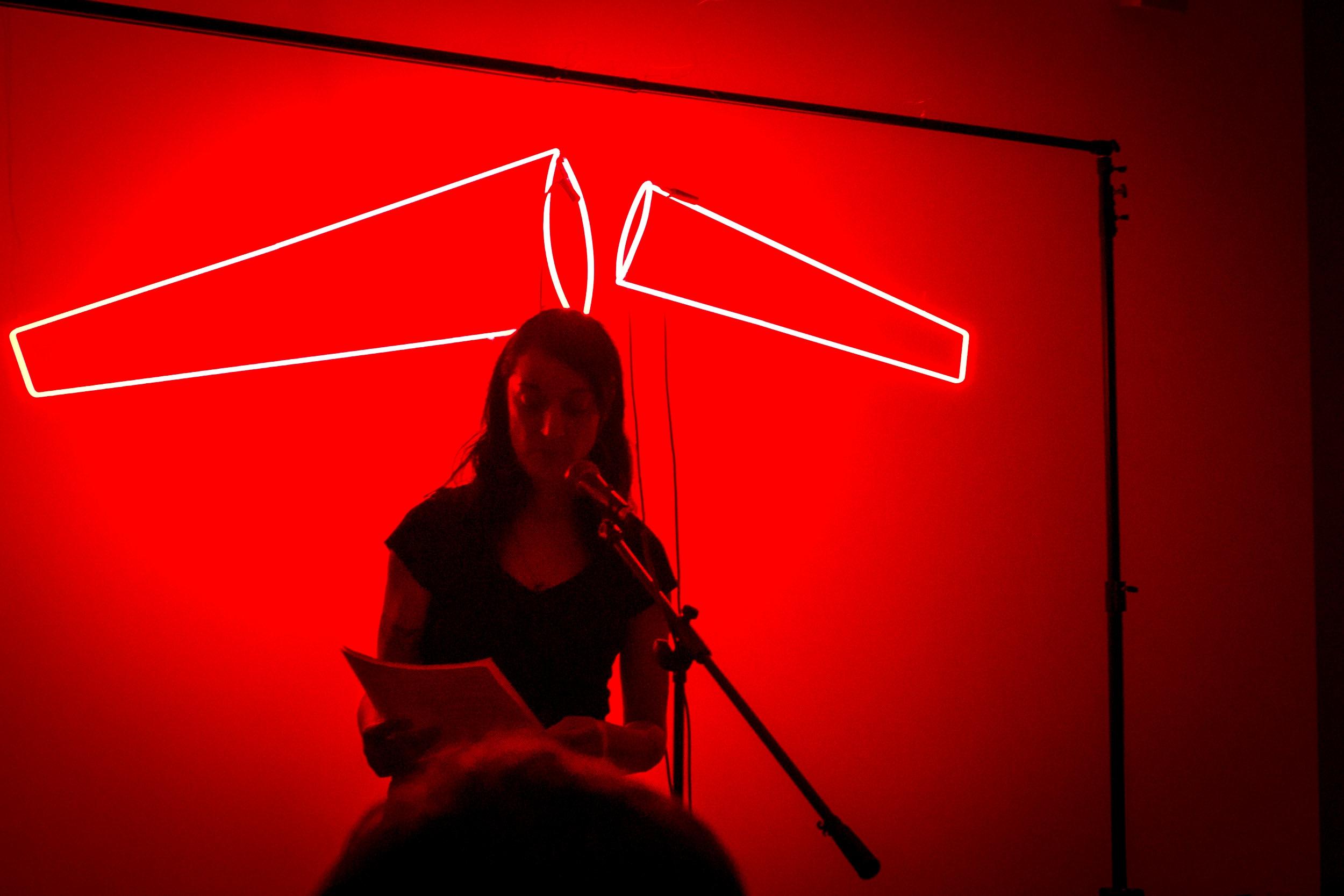 Shameless Light , Visual Studies Workshop, NY. Reader: Sheilah ReStack