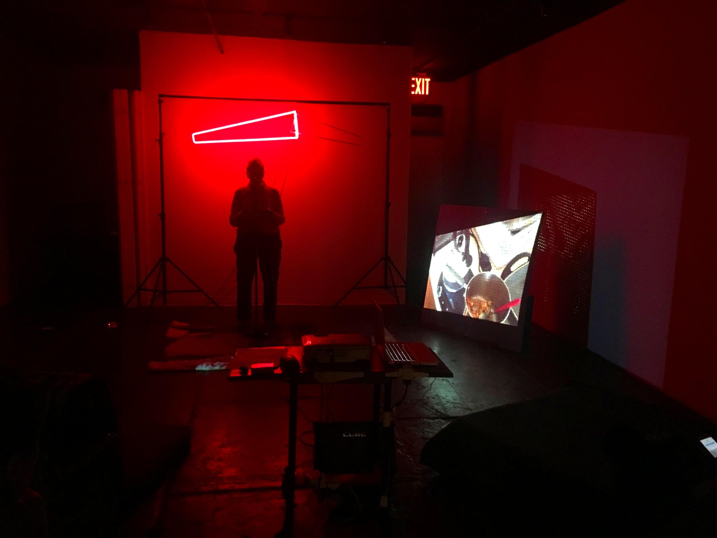 Shameless Light ,Leslie Lohman Project Space, NY. Reader: Ann Kolmbach