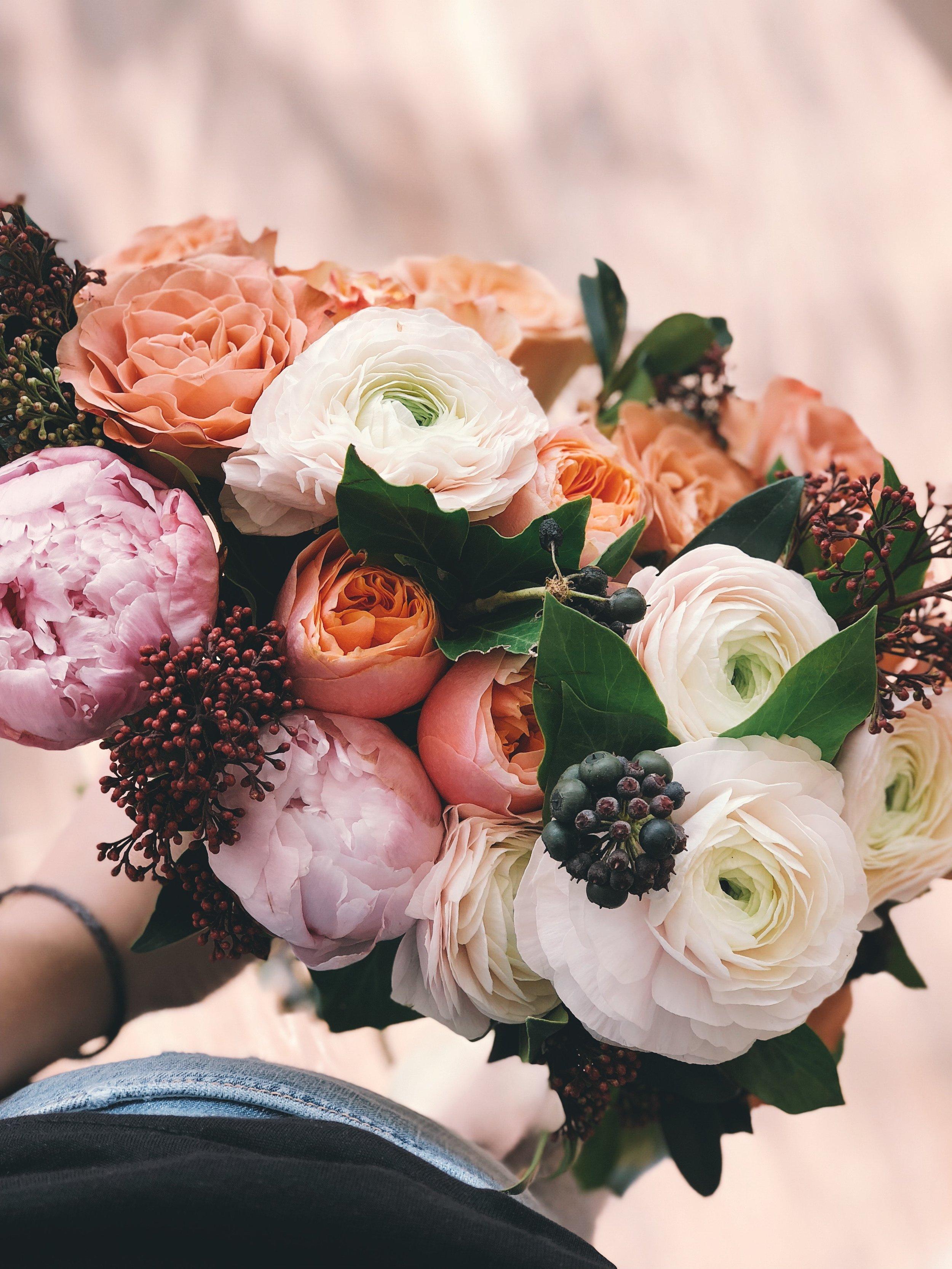 beautiful-blooming-blossom-931155.jpg