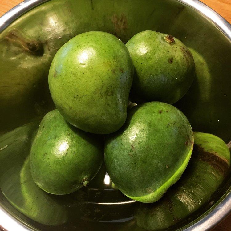 Filipino Food_Indian Mango.JPG