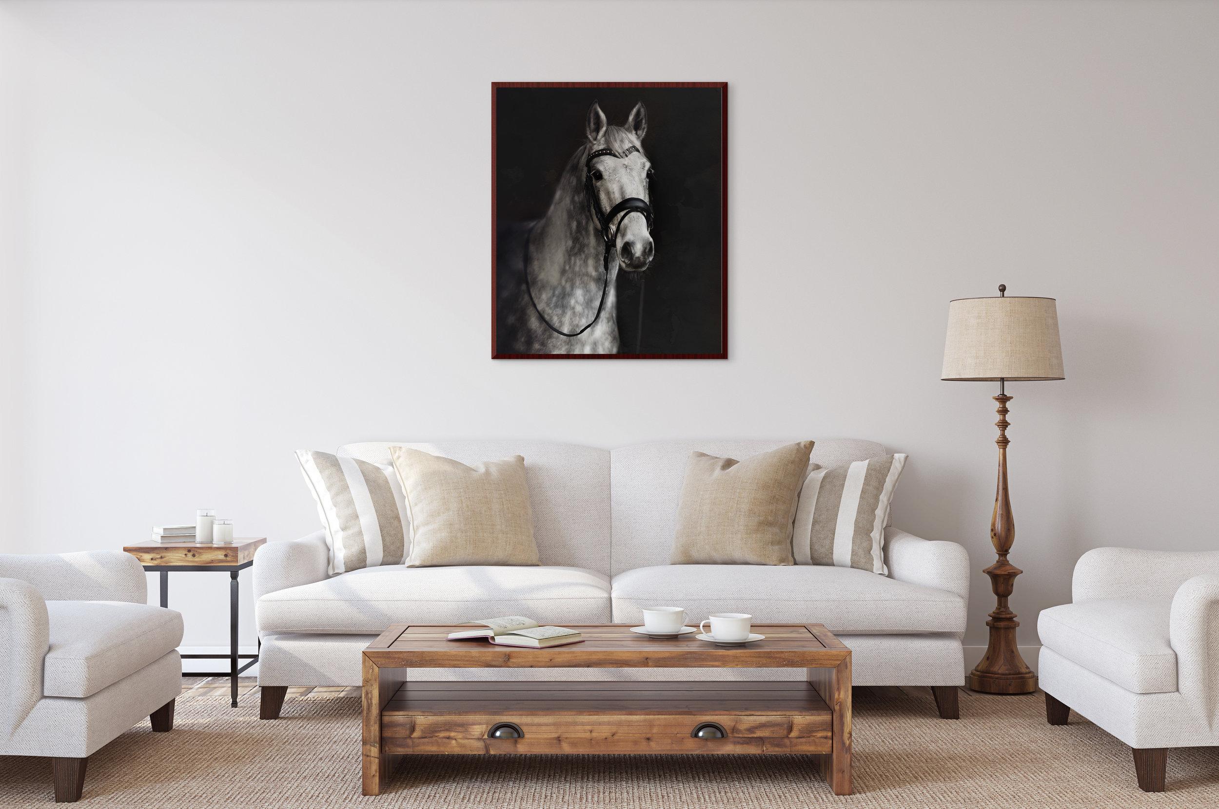 equine_portrait