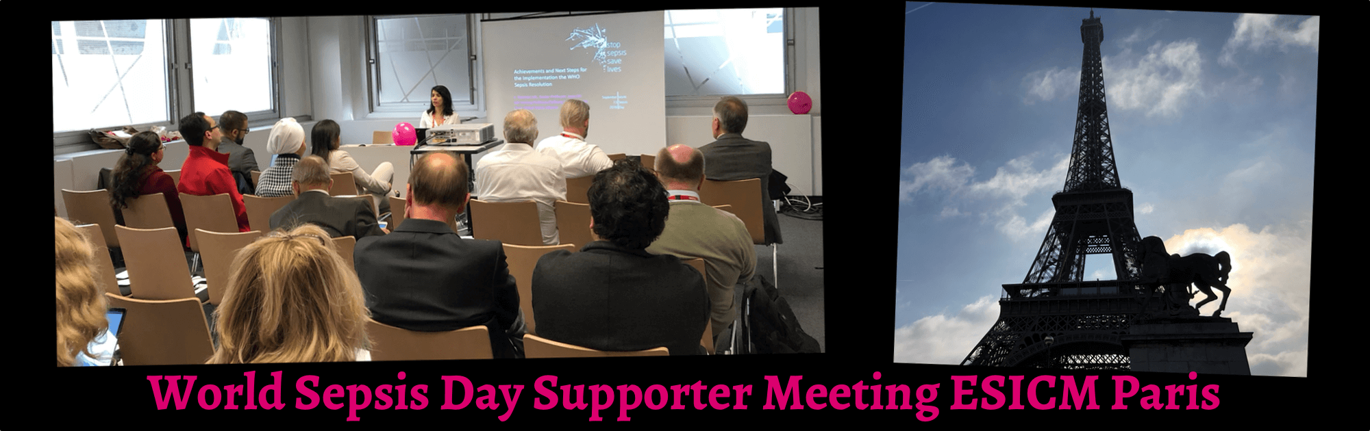 WSD Supporter Meeting Paris (1).png