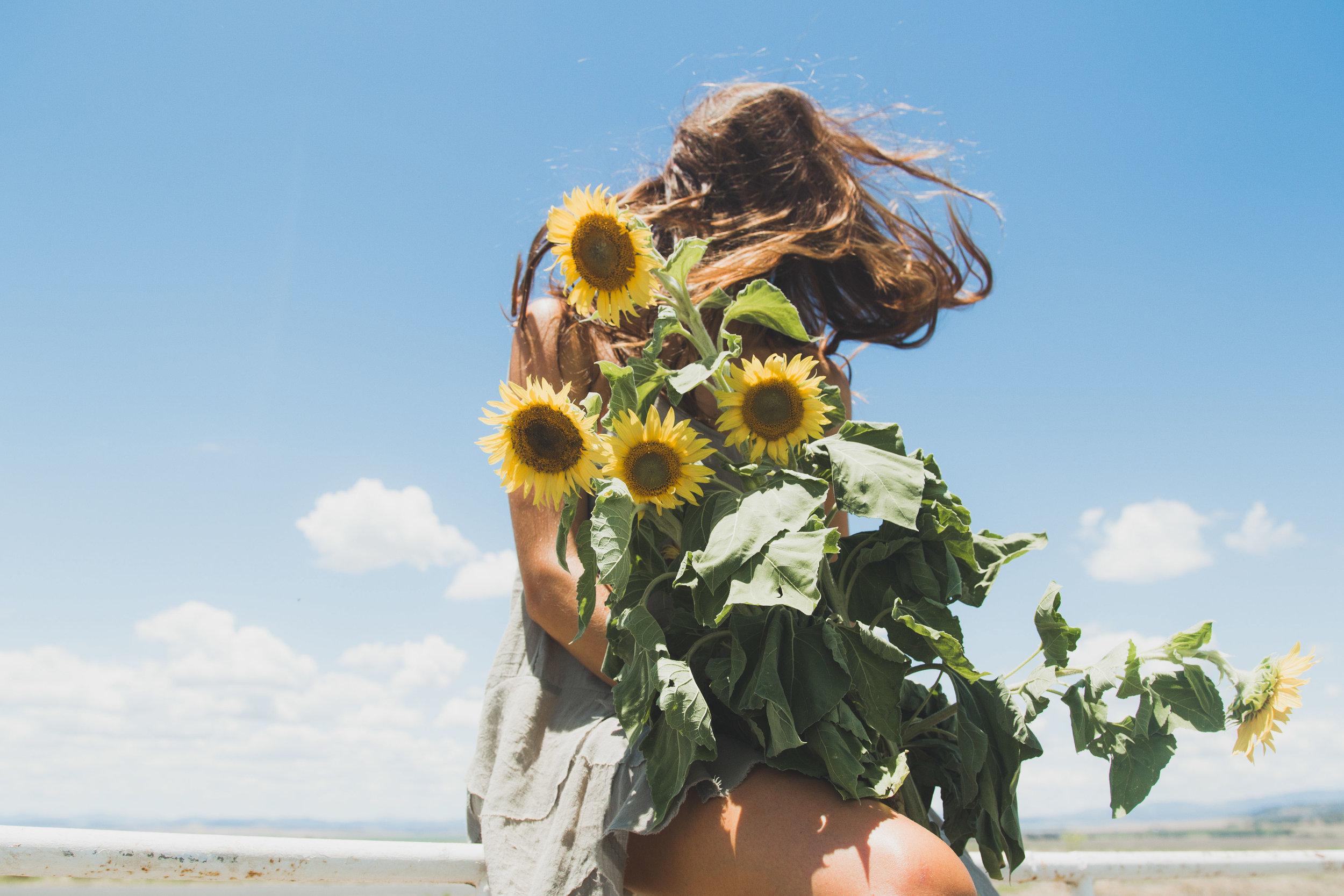 Sunflower WebRes-14.jpg