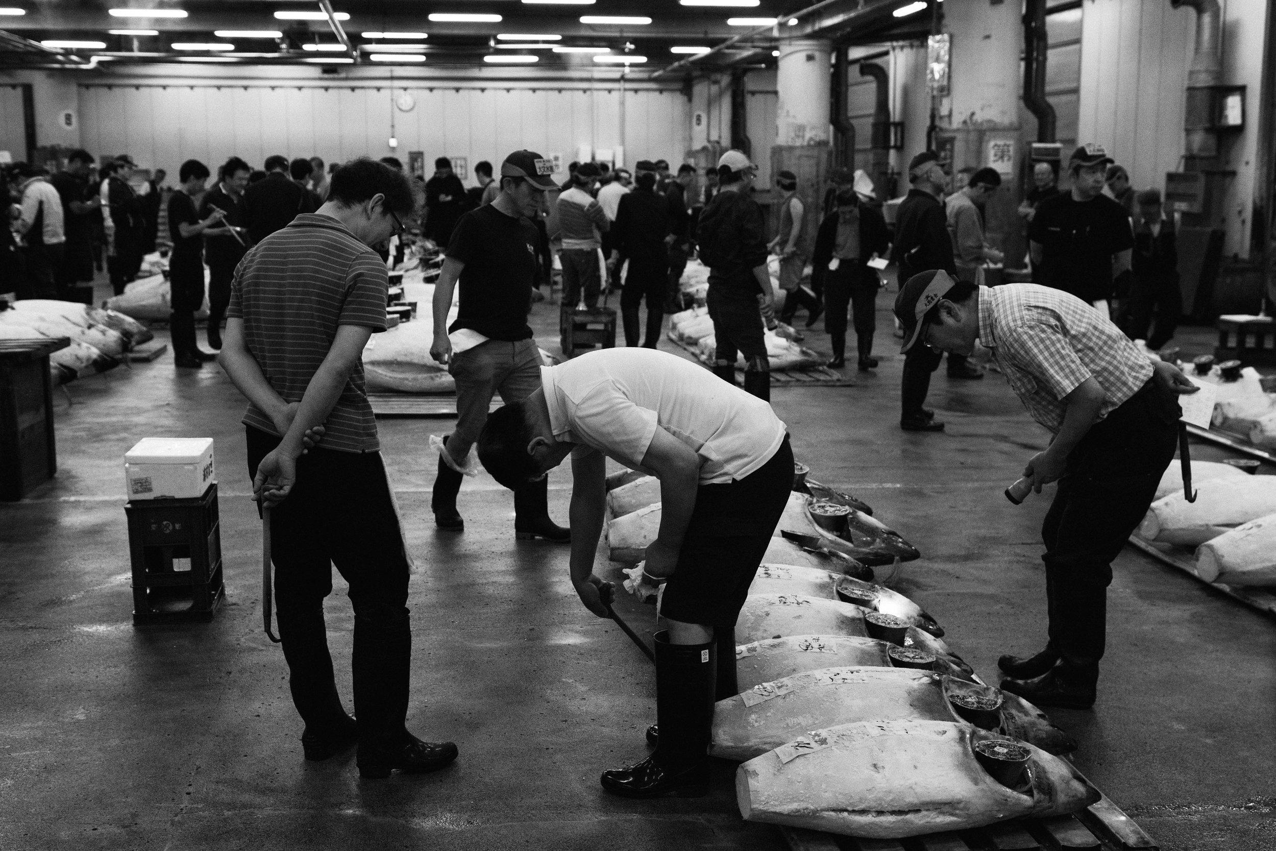 Tsukiji Markets-8.jpg