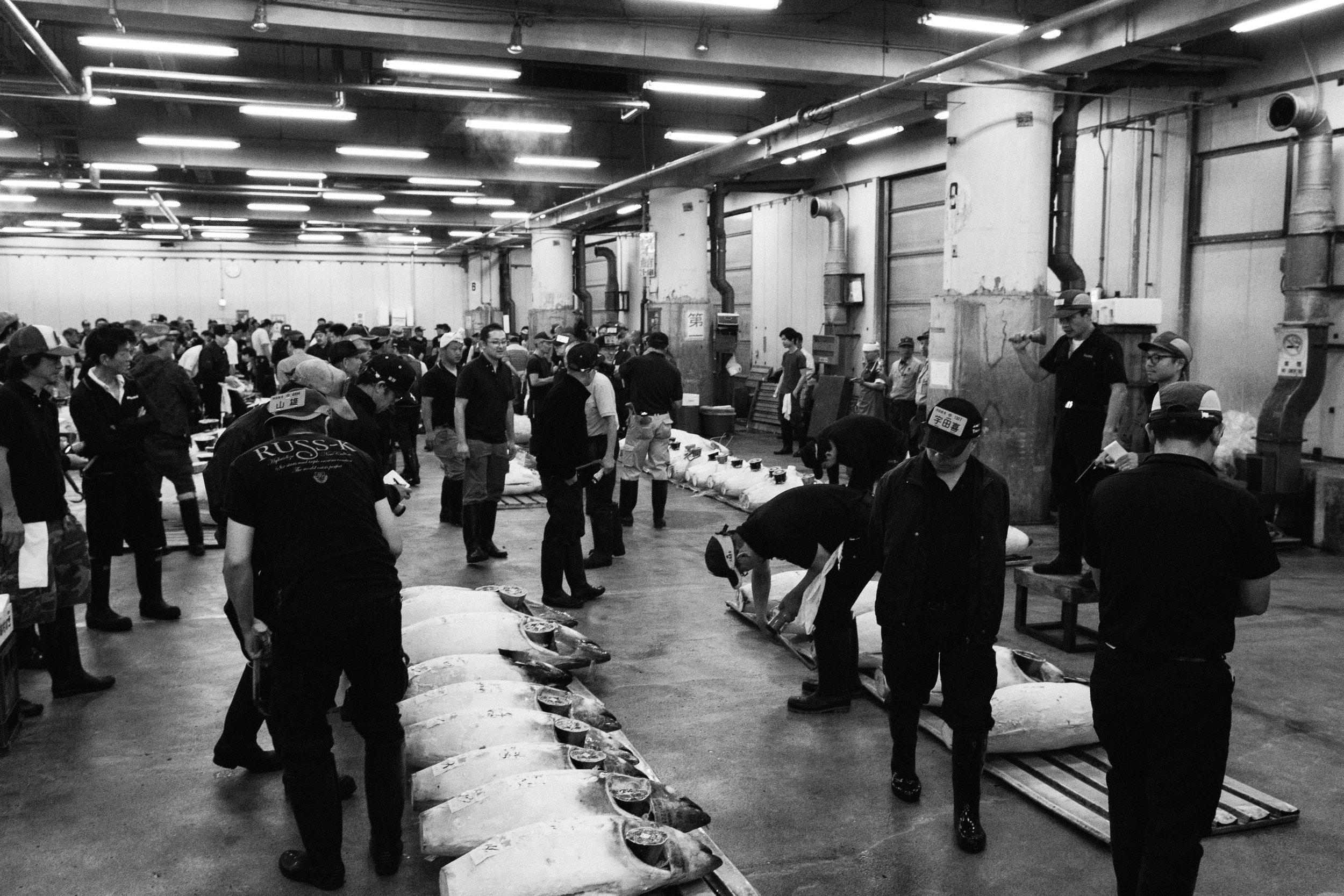 Tsukiji Markets-14.jpg