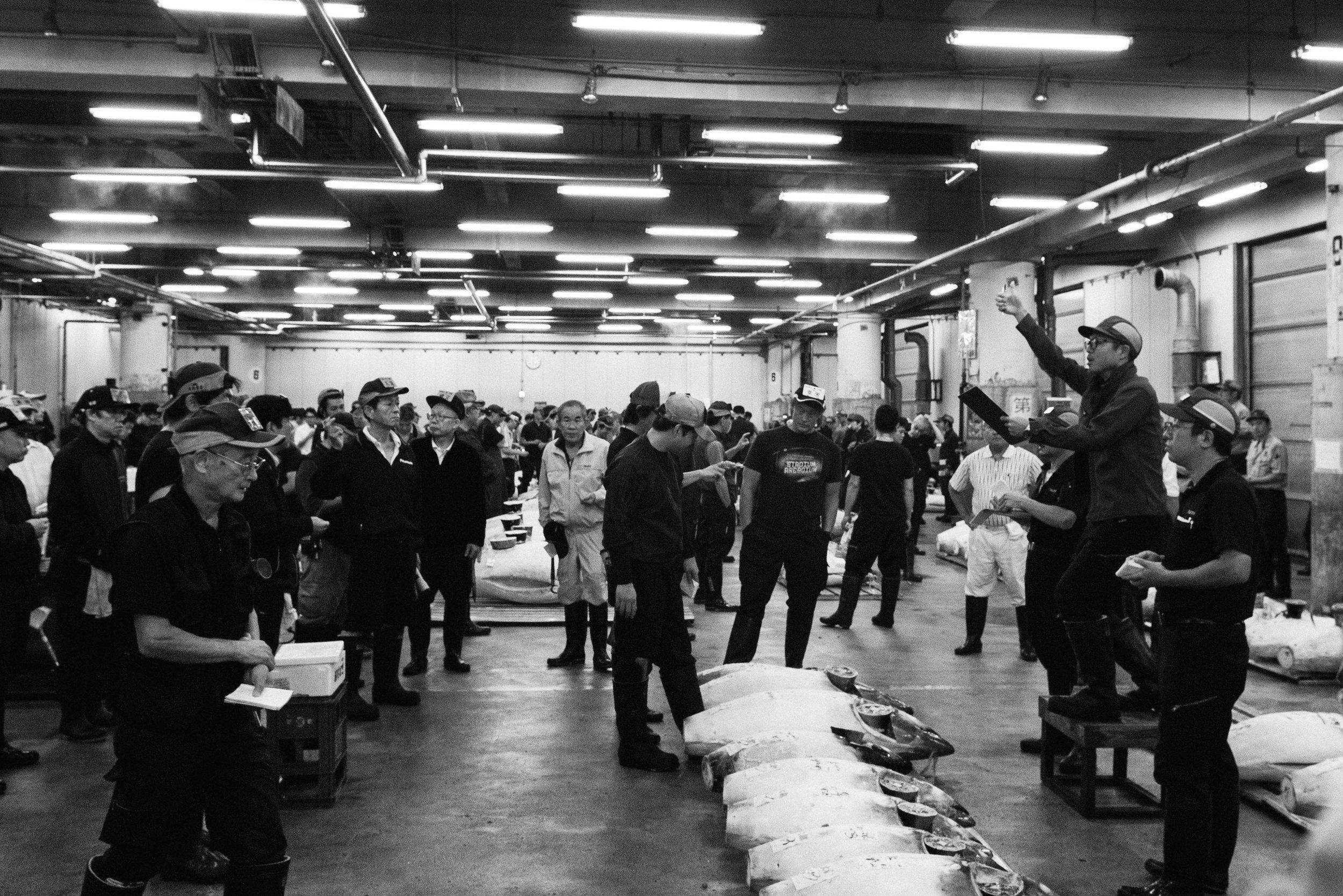 Tsukiji Markets-17.jpg