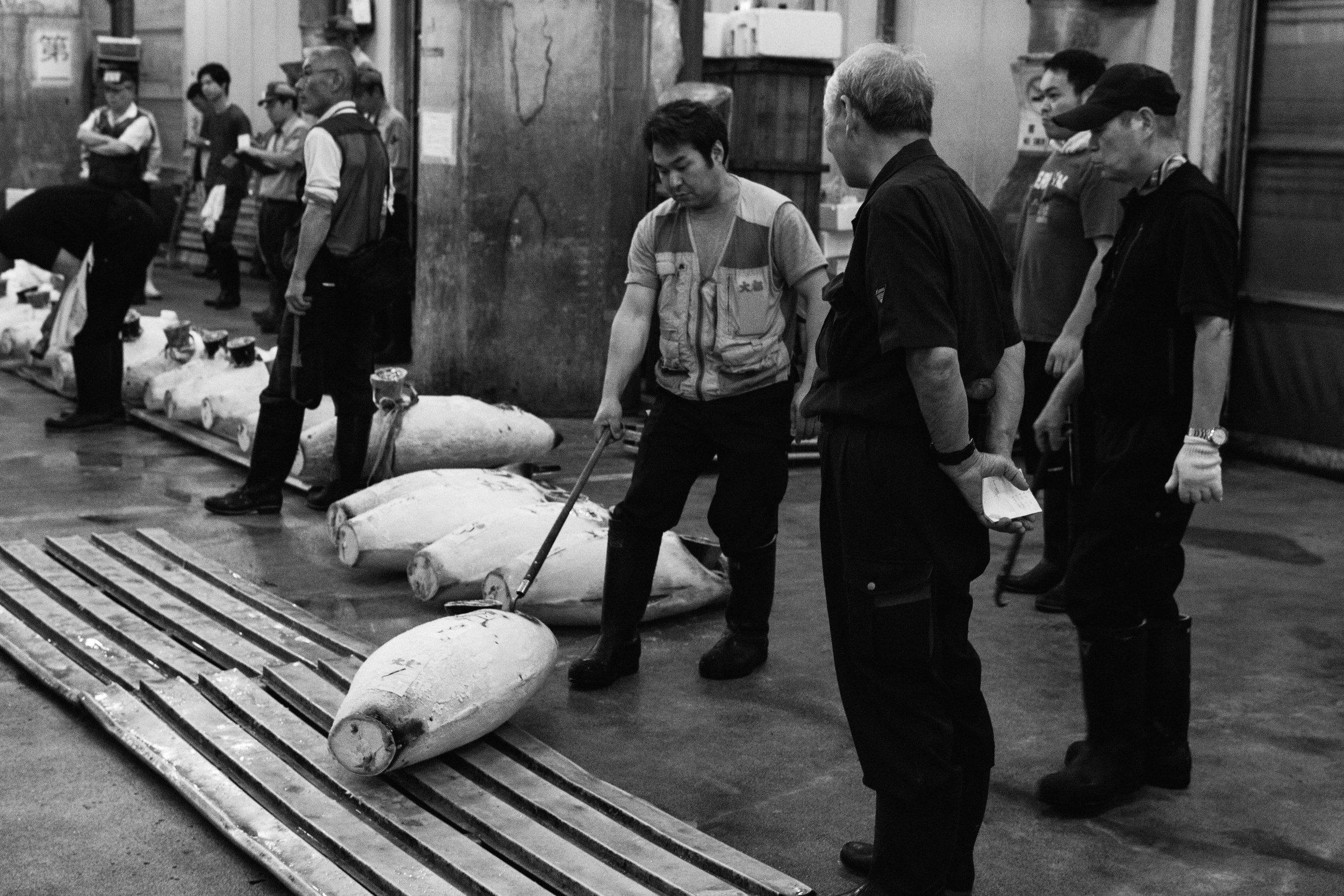 Tsukiji Markets-19.jpg