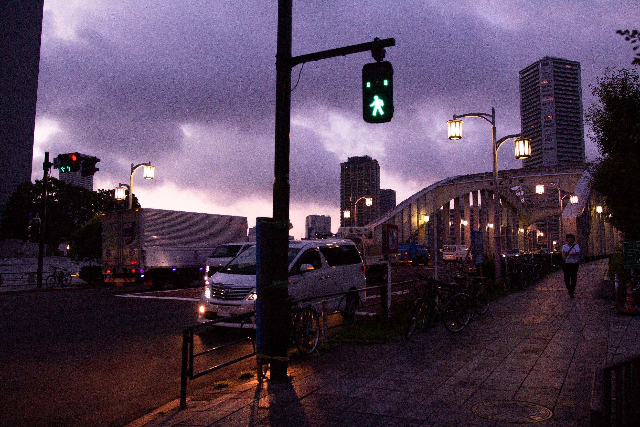Tsukiji Markets.jpg