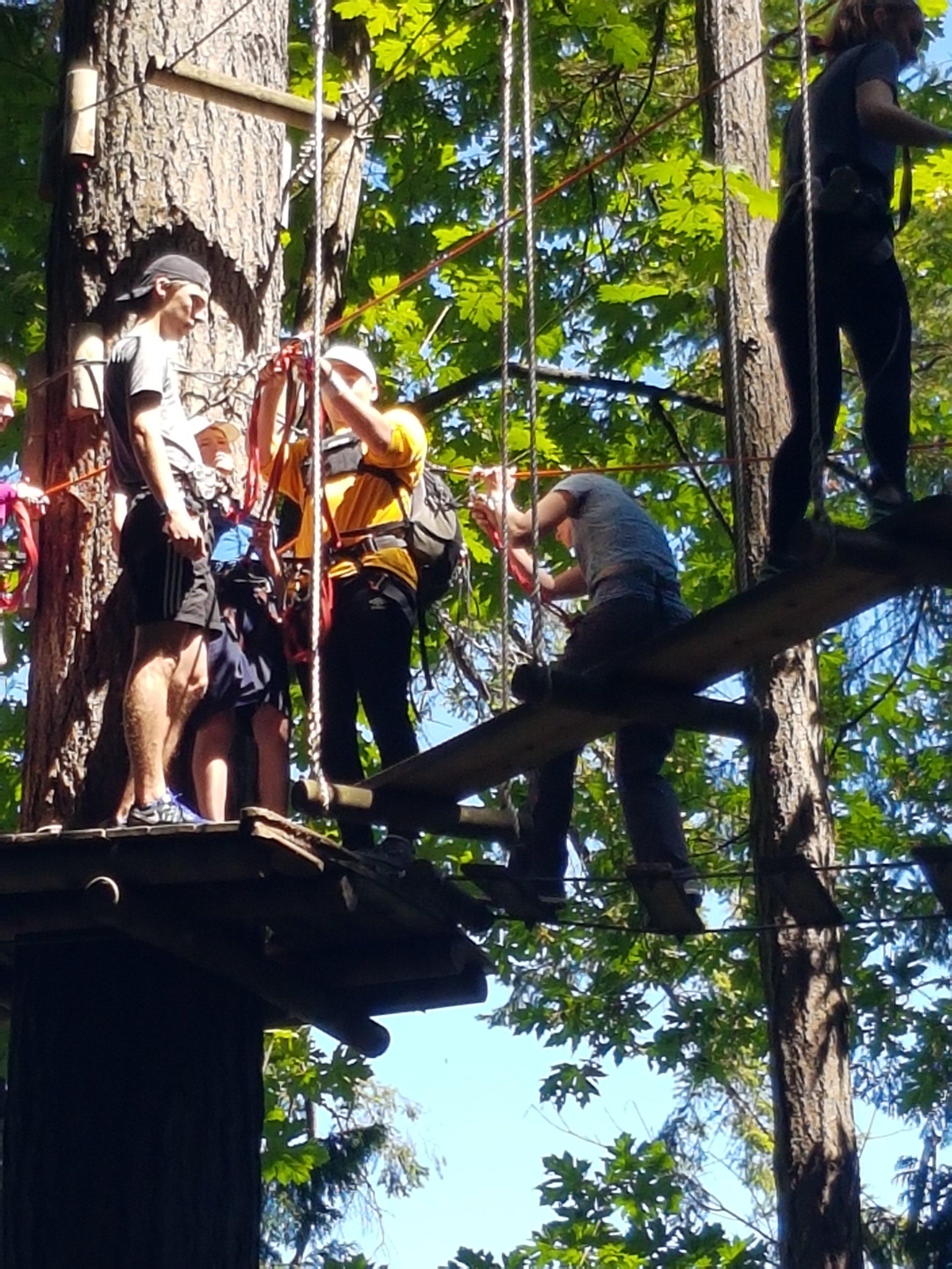 Wildplay ziplining 2.jpg