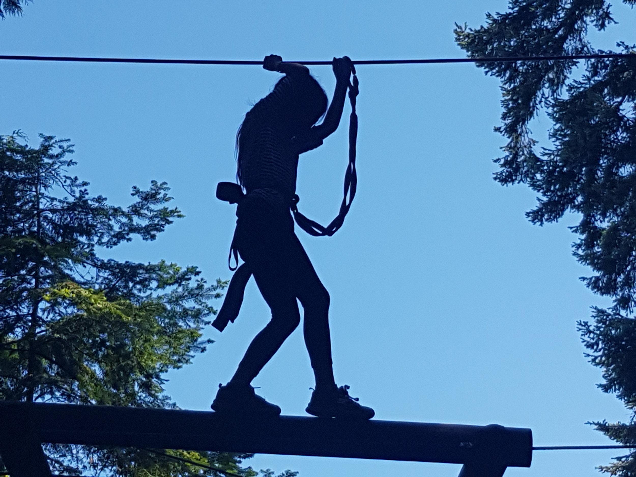 Wildplay ziplining.jpg