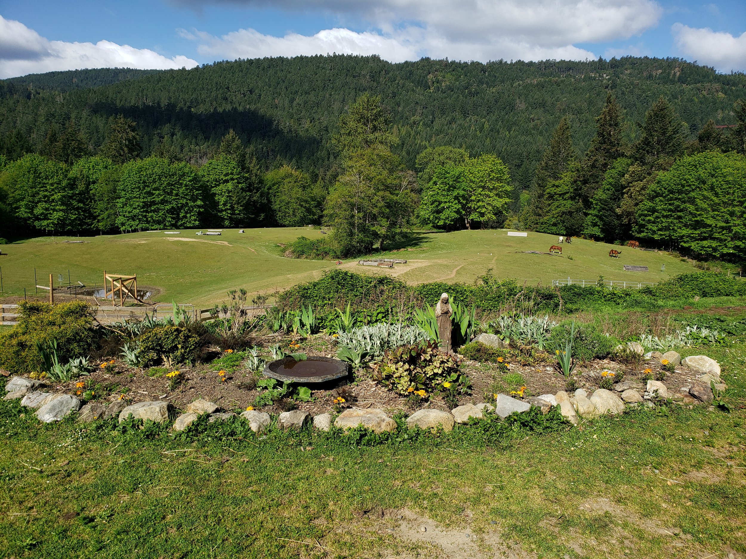 Mary's upper garden.jpg