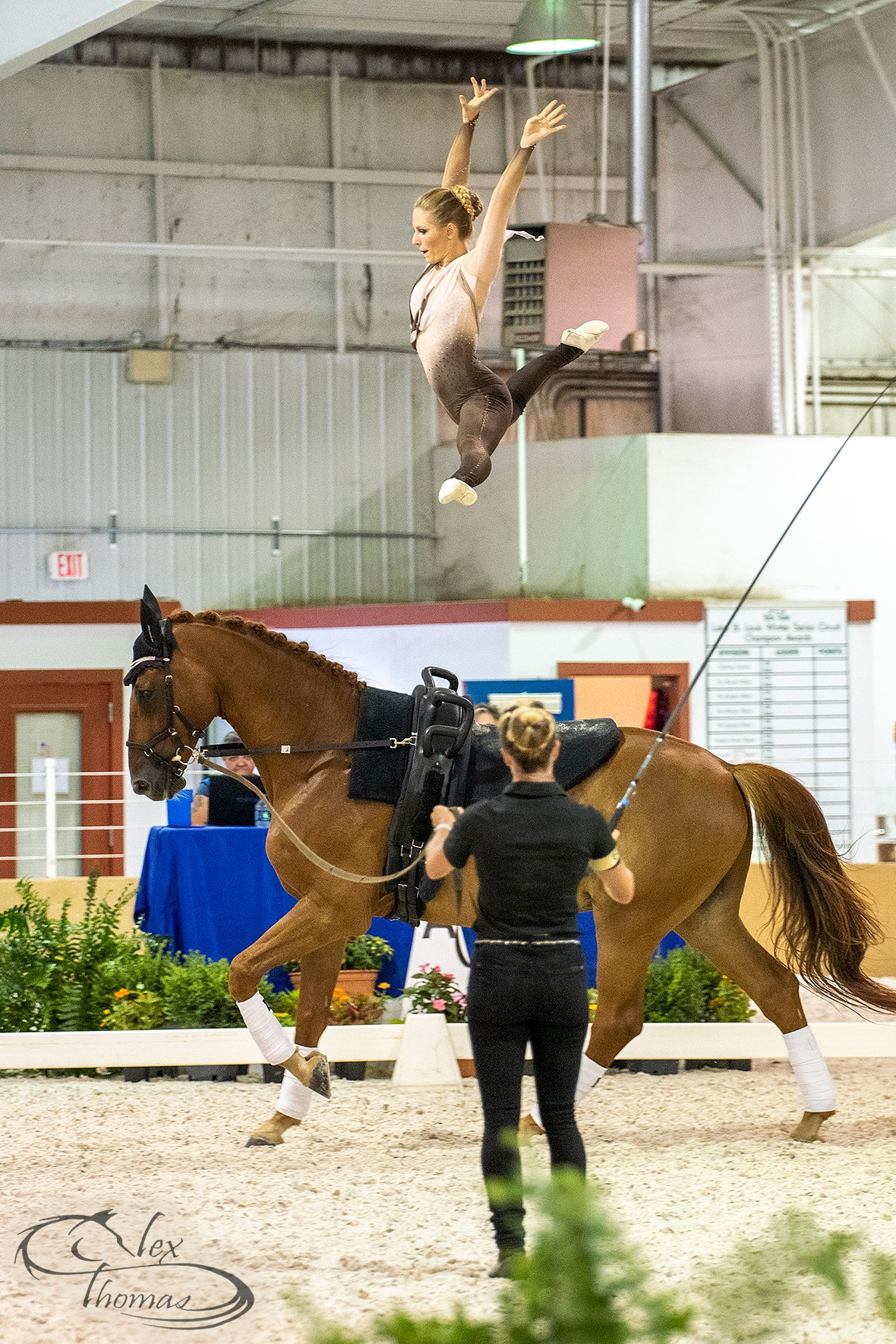 Vaulting picture.jpg