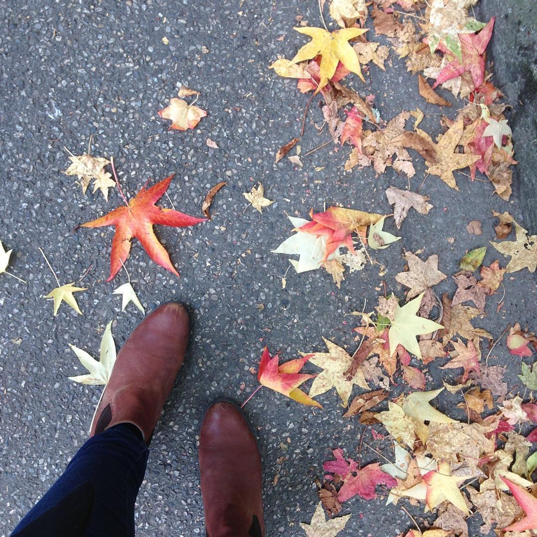 In praise of Autumn - I always arrive into autumn with a sigh of relief.