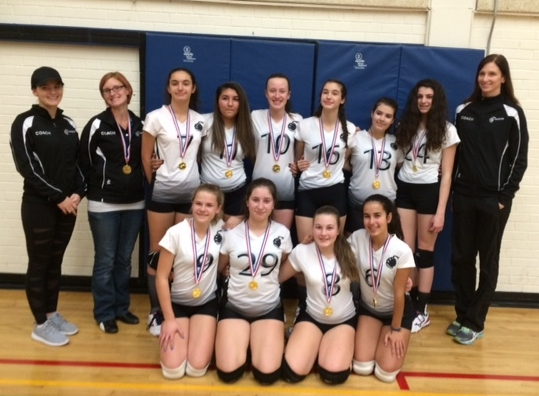 14U Vipers - Gold - Markham Exhibition Tournament