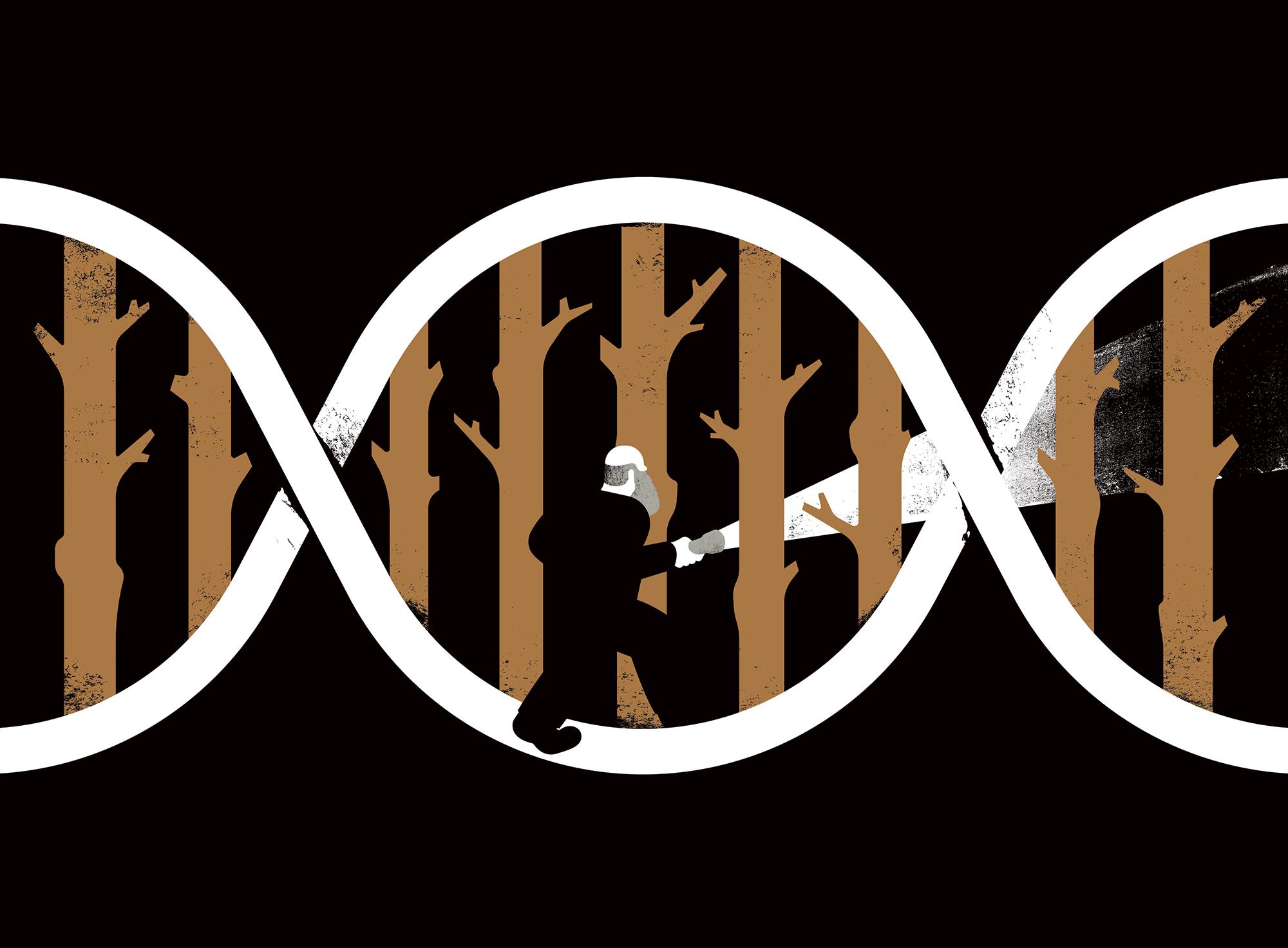 Dark DNA – The Hidden Genes That Drive Evolution (Cover Illustration)