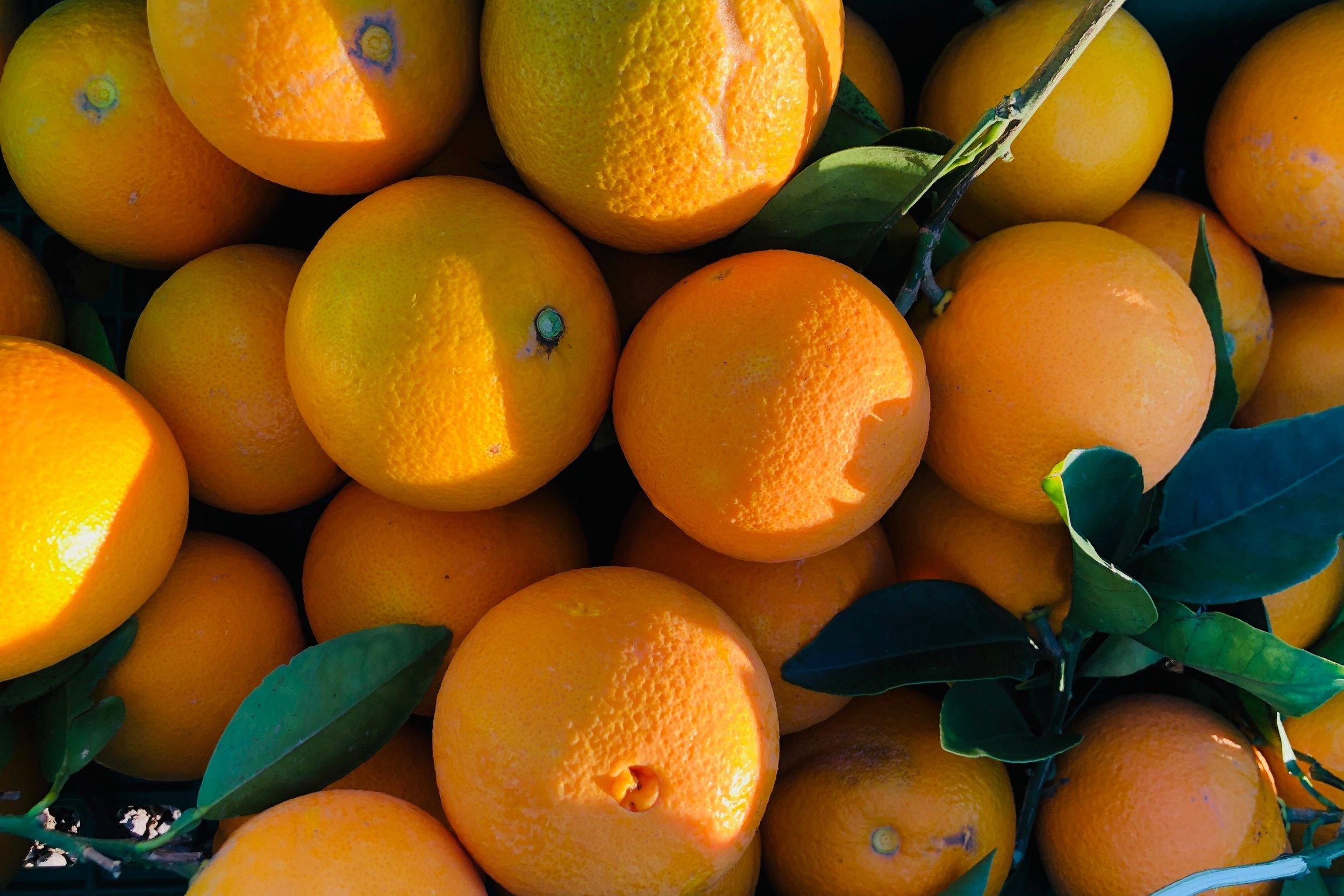 edr_oranges.jpeg